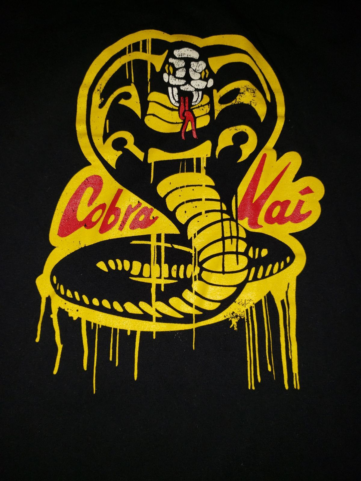 Cobra Kai Snake Wallpapers - Wallpaper Cave