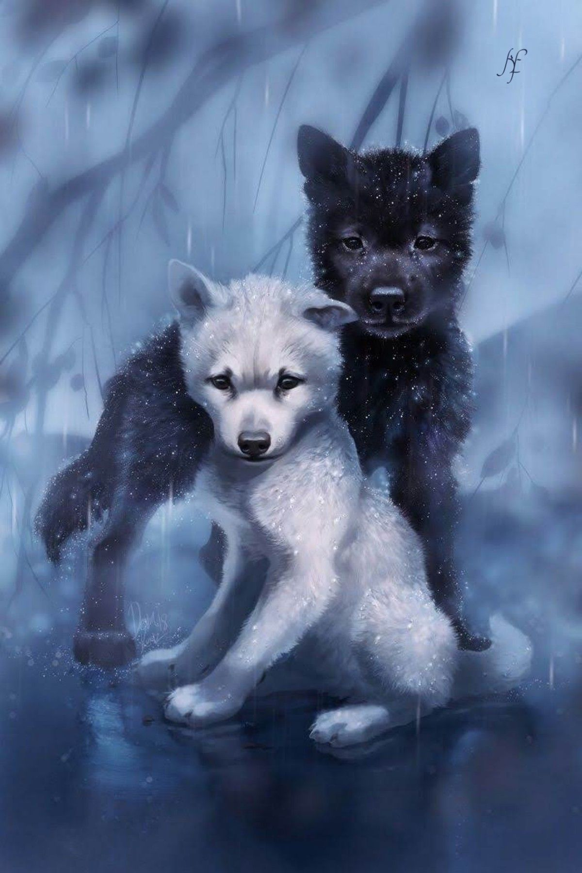 Spirit Wolf Pups Wallpapers Wallpaper Cave