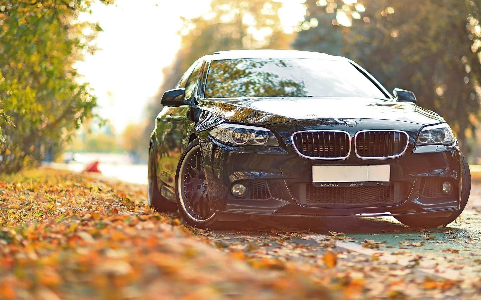 Autumn Bmw Wallpapers Wallpaper Cave