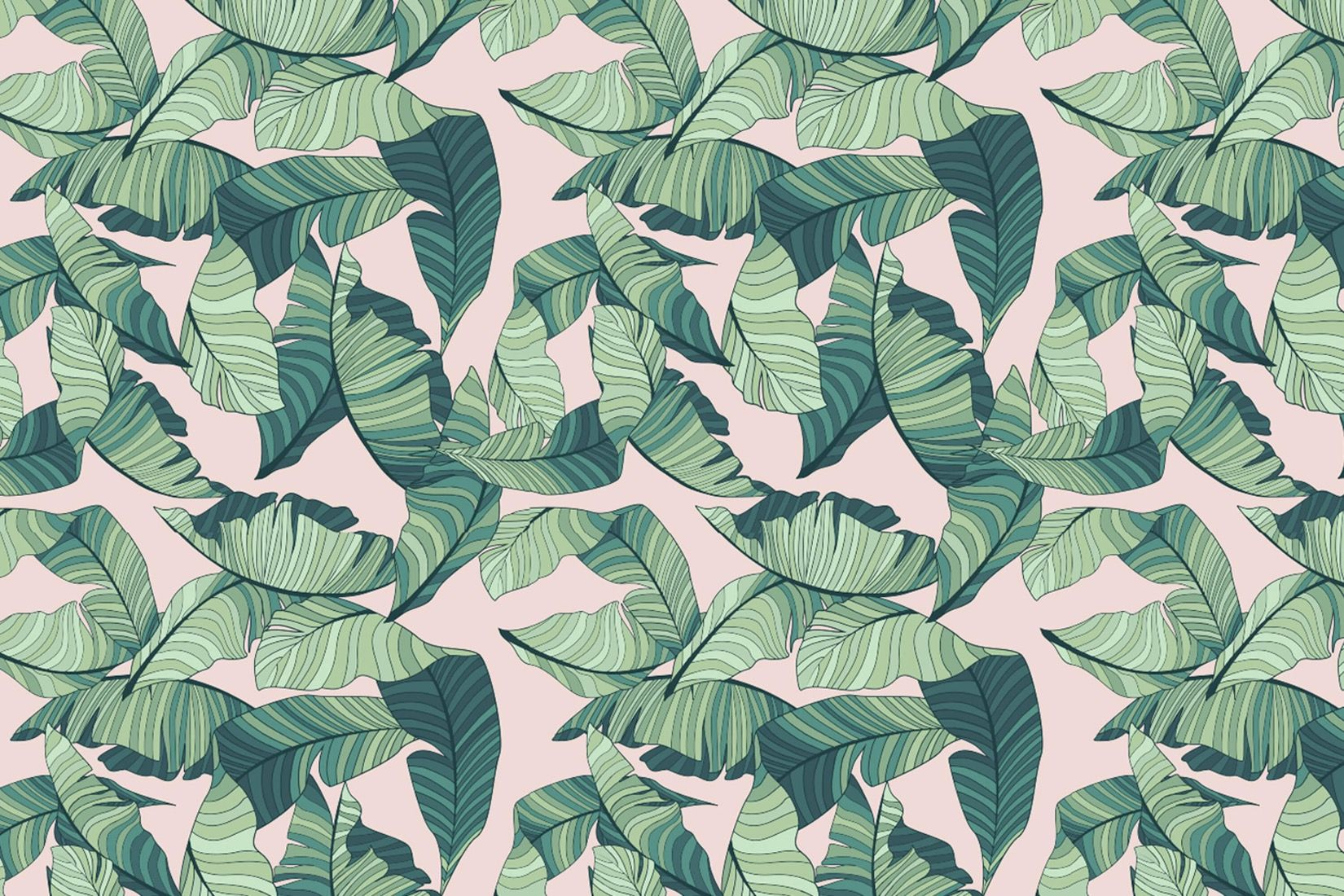 Green Tropical Leaves Desktop Wallpapers Wallpaper Cave Polish your personal project or design with these tropical leaves transparent png images, make it even more personalized and more attractive. green tropical leaves desktop