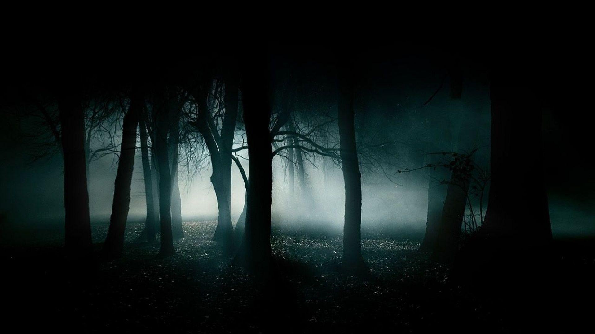 Halloween Woods Wallpapers - Wallpaper Cave