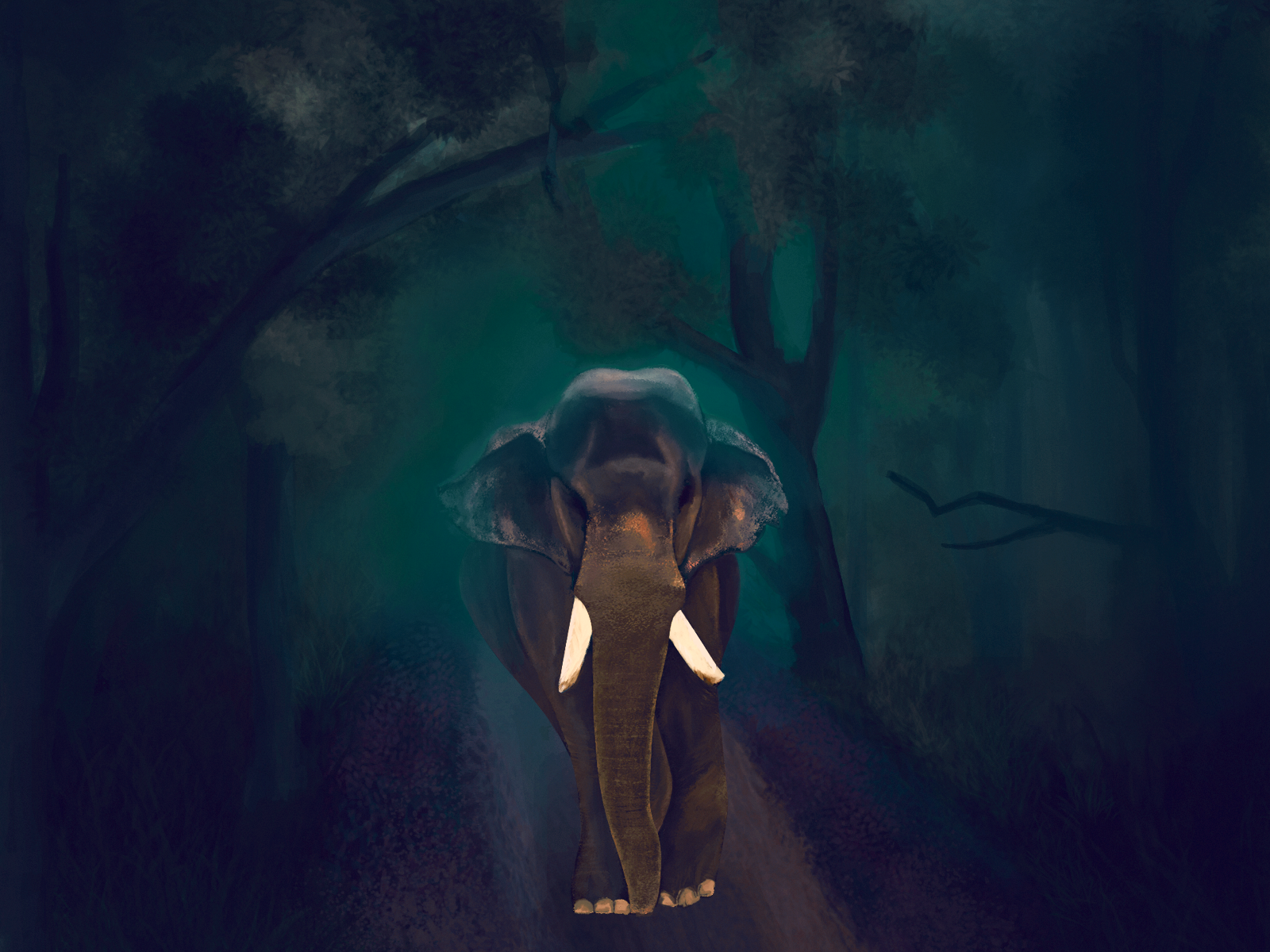 Kerala Elephants Wallpapers Wallpaper Cave Almost files can be used for commercial. kerala elephants wallpapers wallpaper