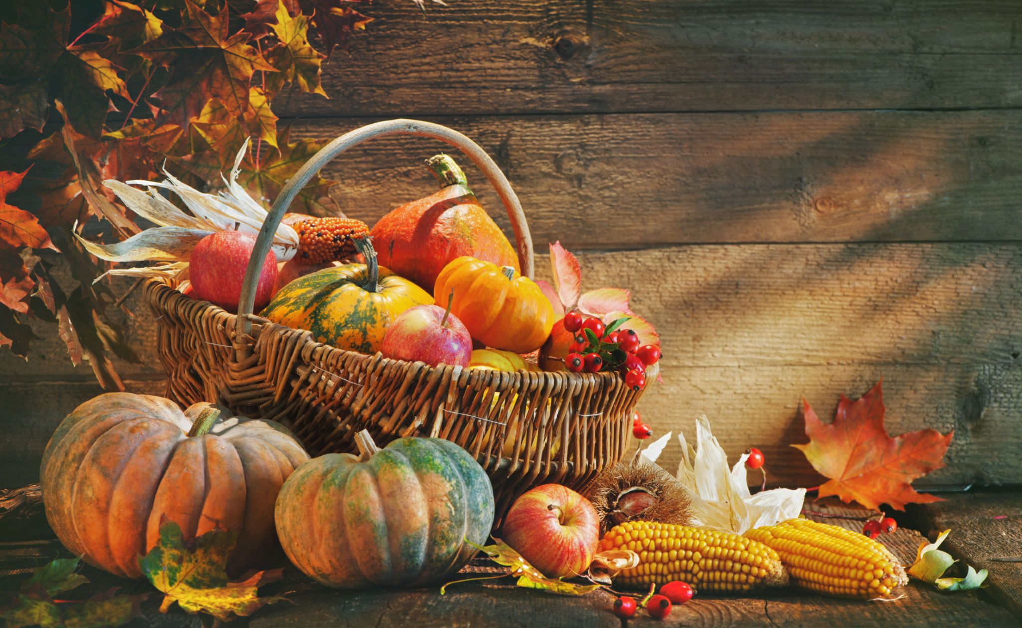 1000+ Happy Thanksgiving Image & Pictures HD [2020]