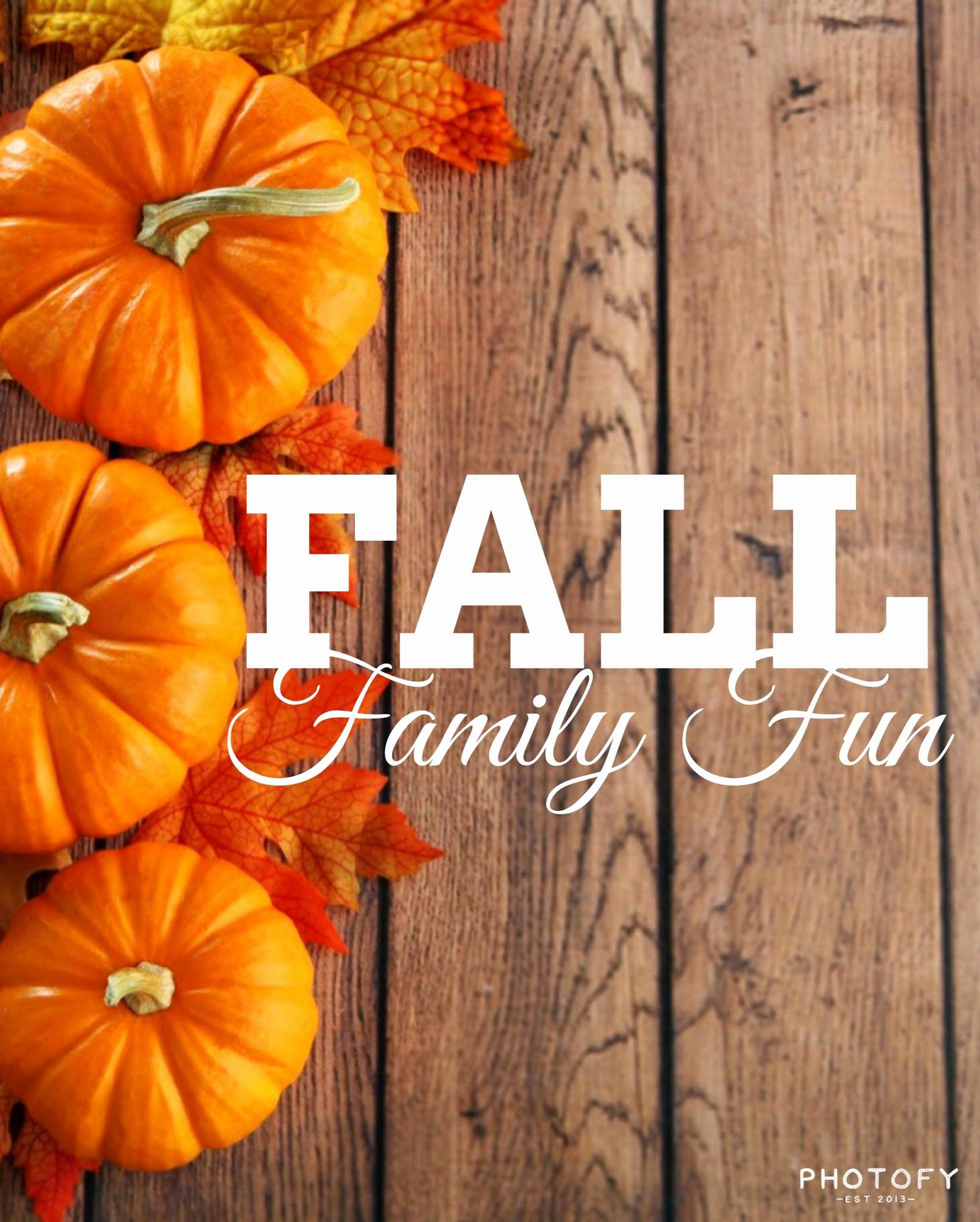 Cute Thanksgiving Pictures Wallpapers ...