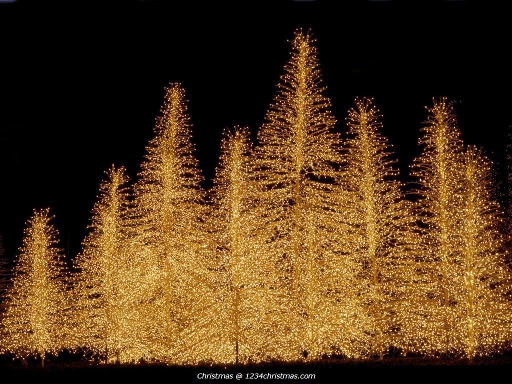 Golden Christmas Tree Wallpapers Wallpaper Cave