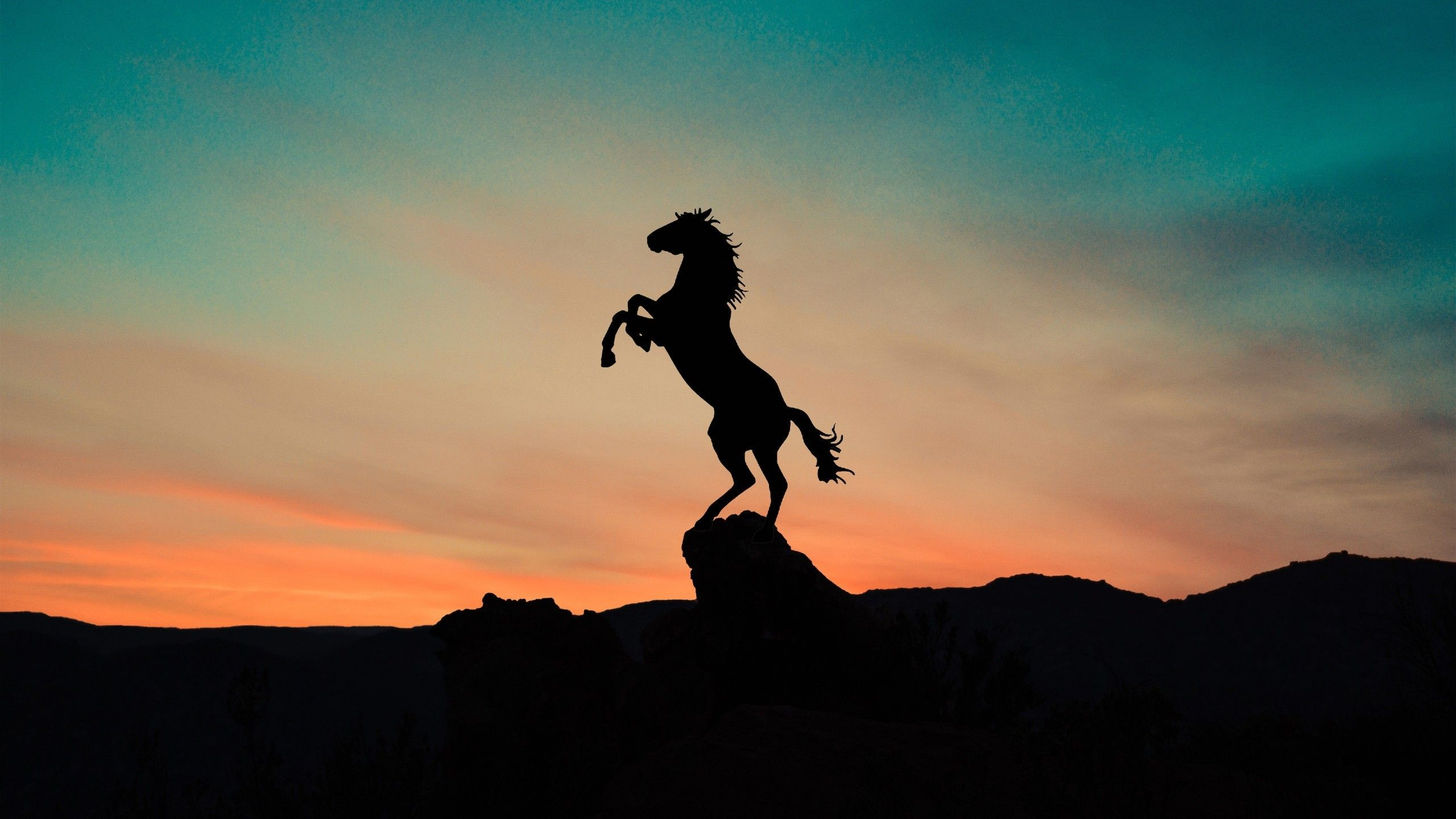 Aesthetic Sunset Horse Wallpapers Wallpaper Cave