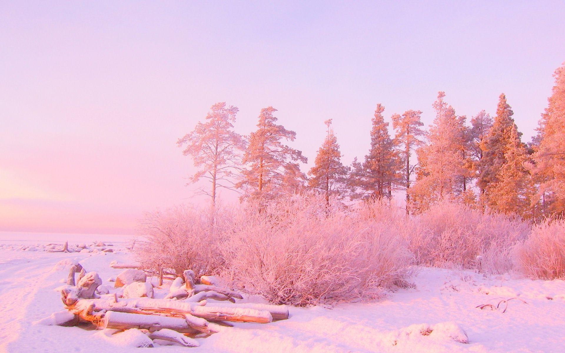 Pink Aesthetic Snow Landscape ...