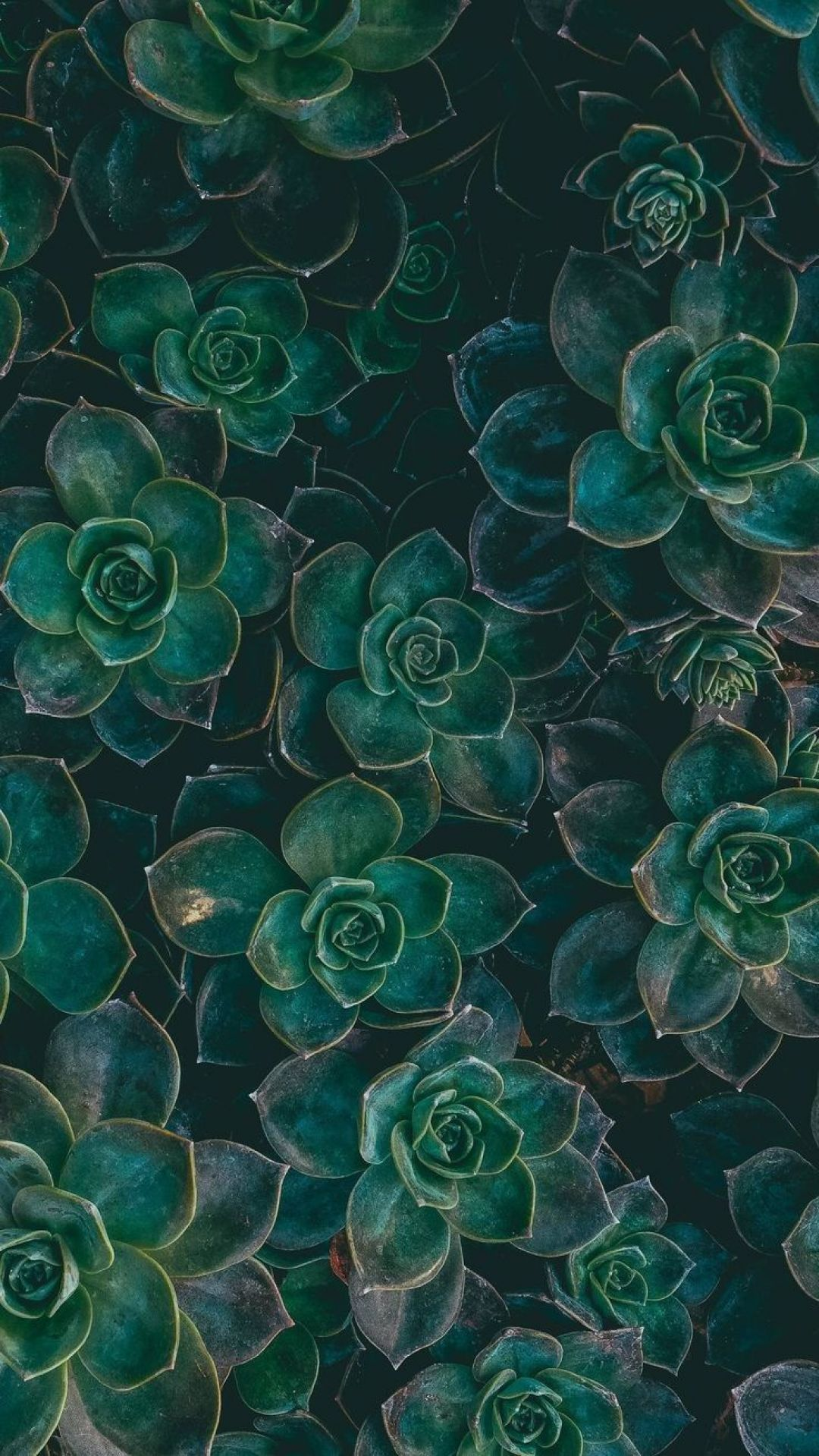 black and green aesthetic wallpapers