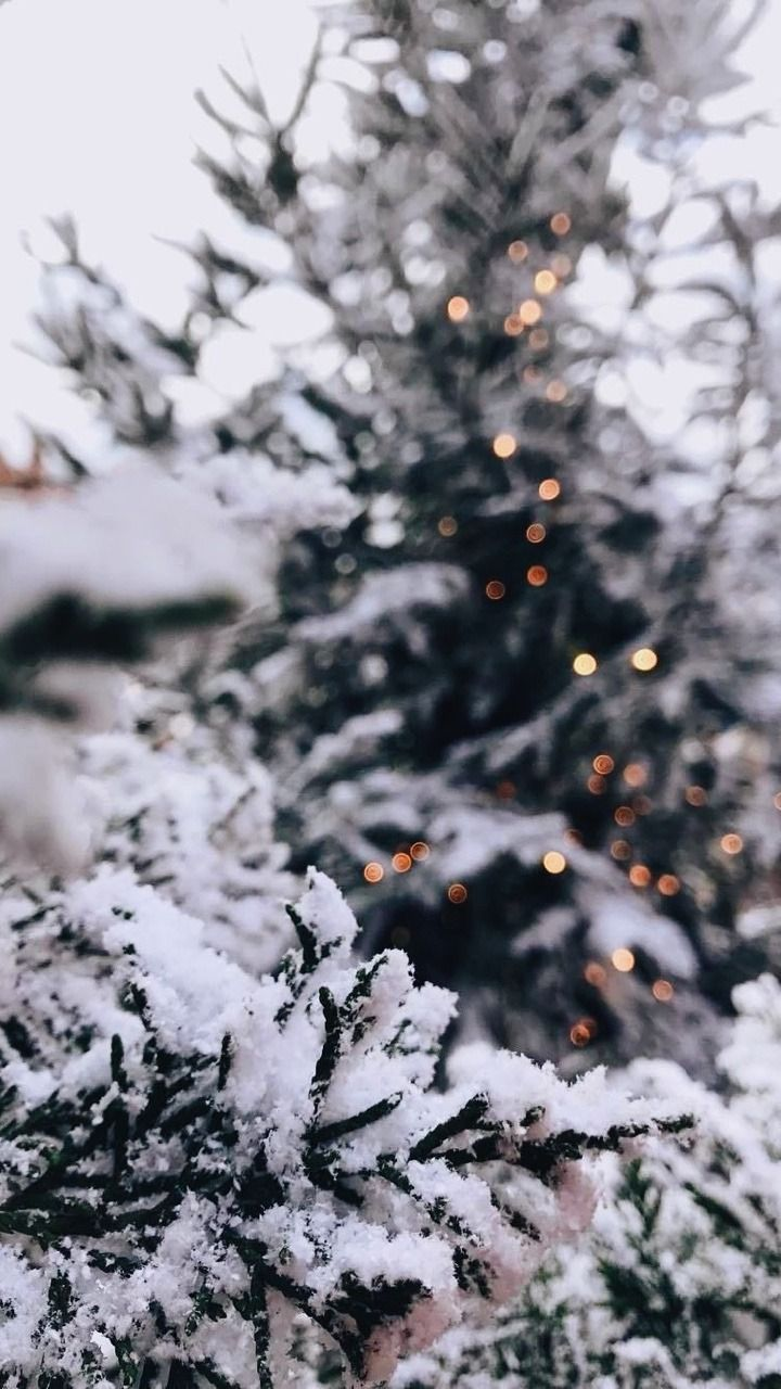 Aesthetic Christmas Let It Snow Wallpapers - Wallpaper Cave