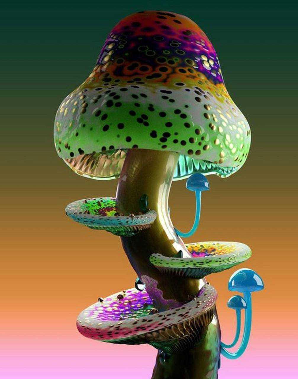 Mushroom Aesthetic Wallpapers Wallpaper Cave