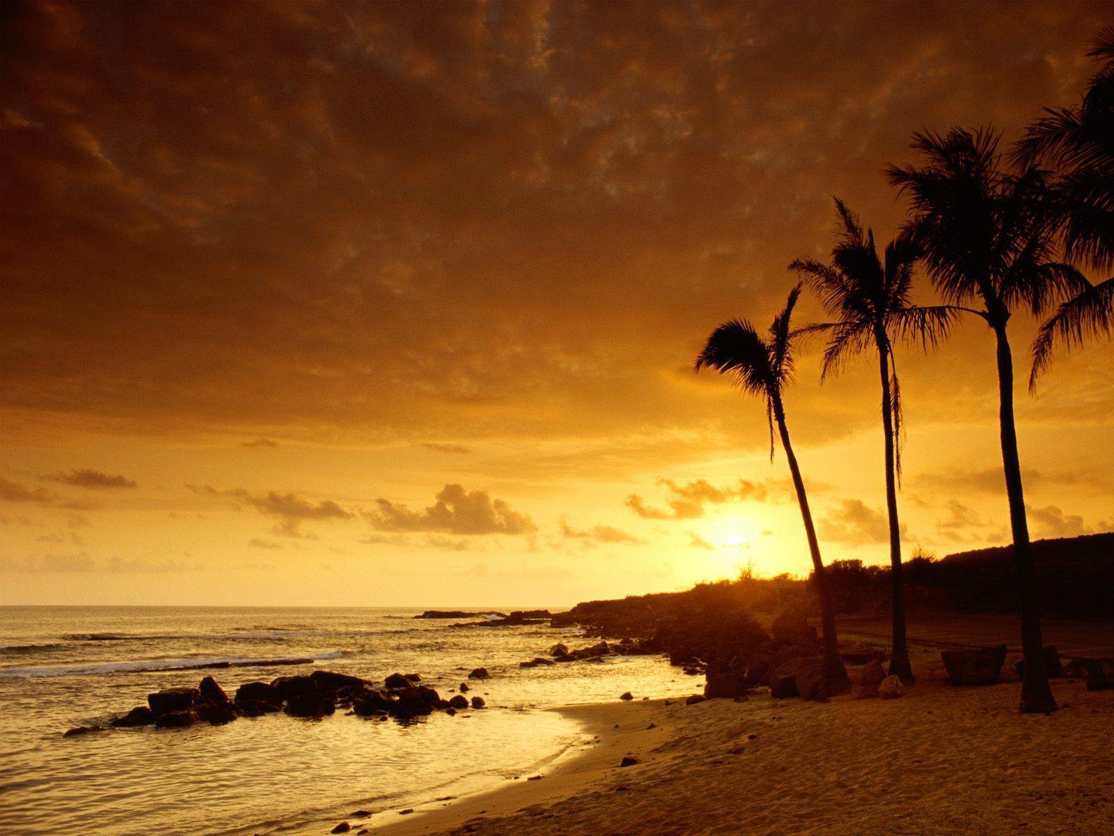 Wallpapers For > Hawaiian Sunset Background