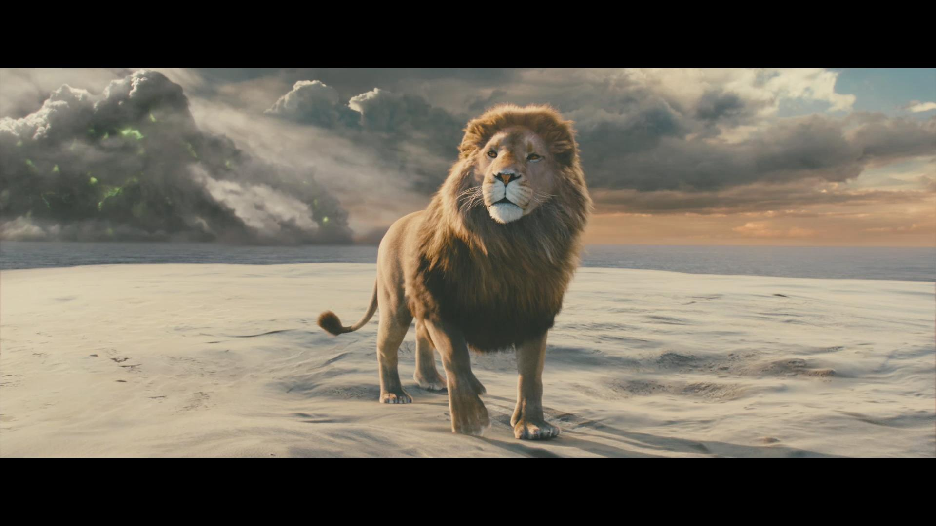The-Chronicles-of-Narnia--Aslan--_ Wallpaper | fairytales and ...