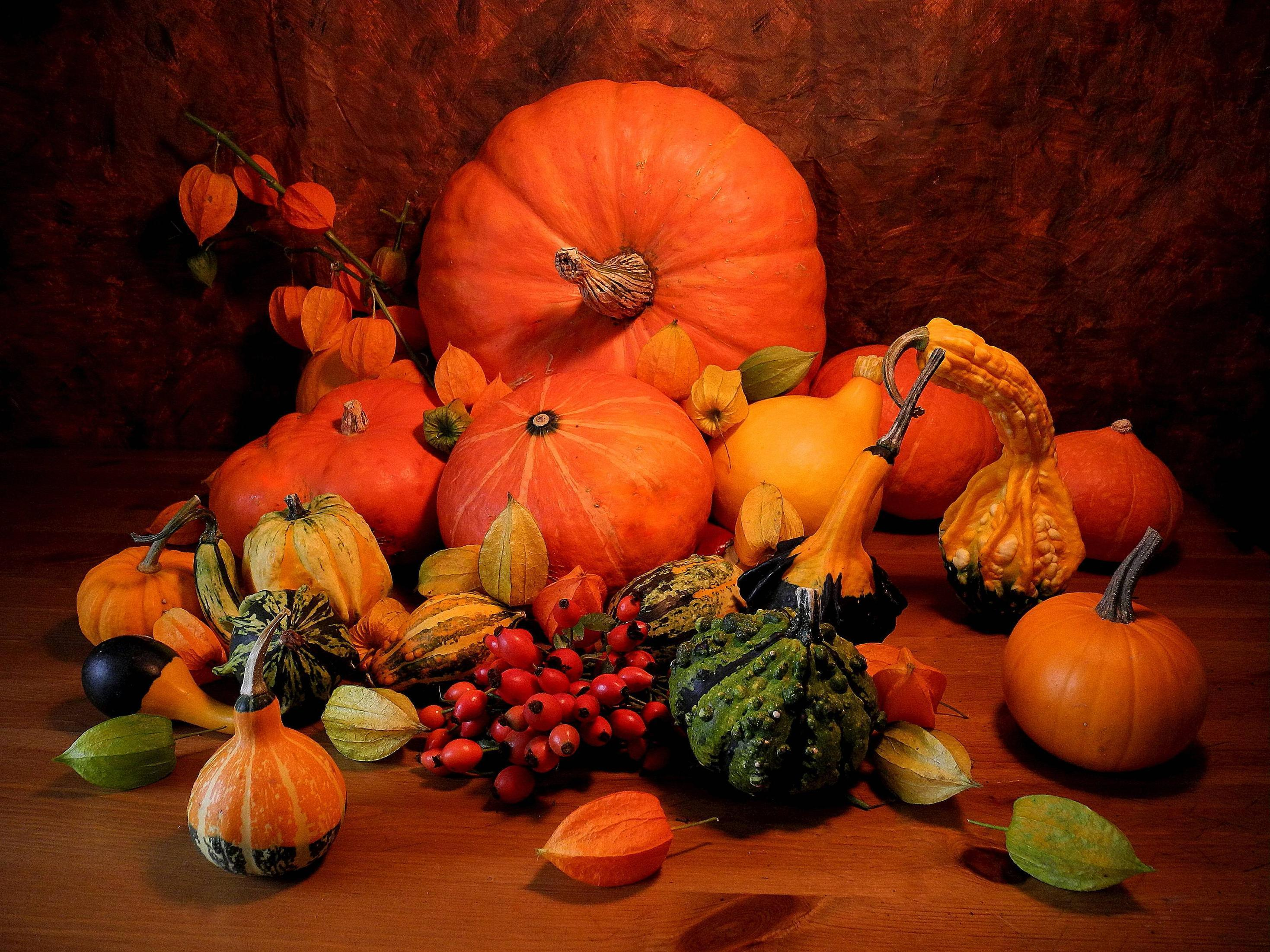 Pumpkin wallpapers free wallpaper cave - Fall wallpaper pumpkins ...