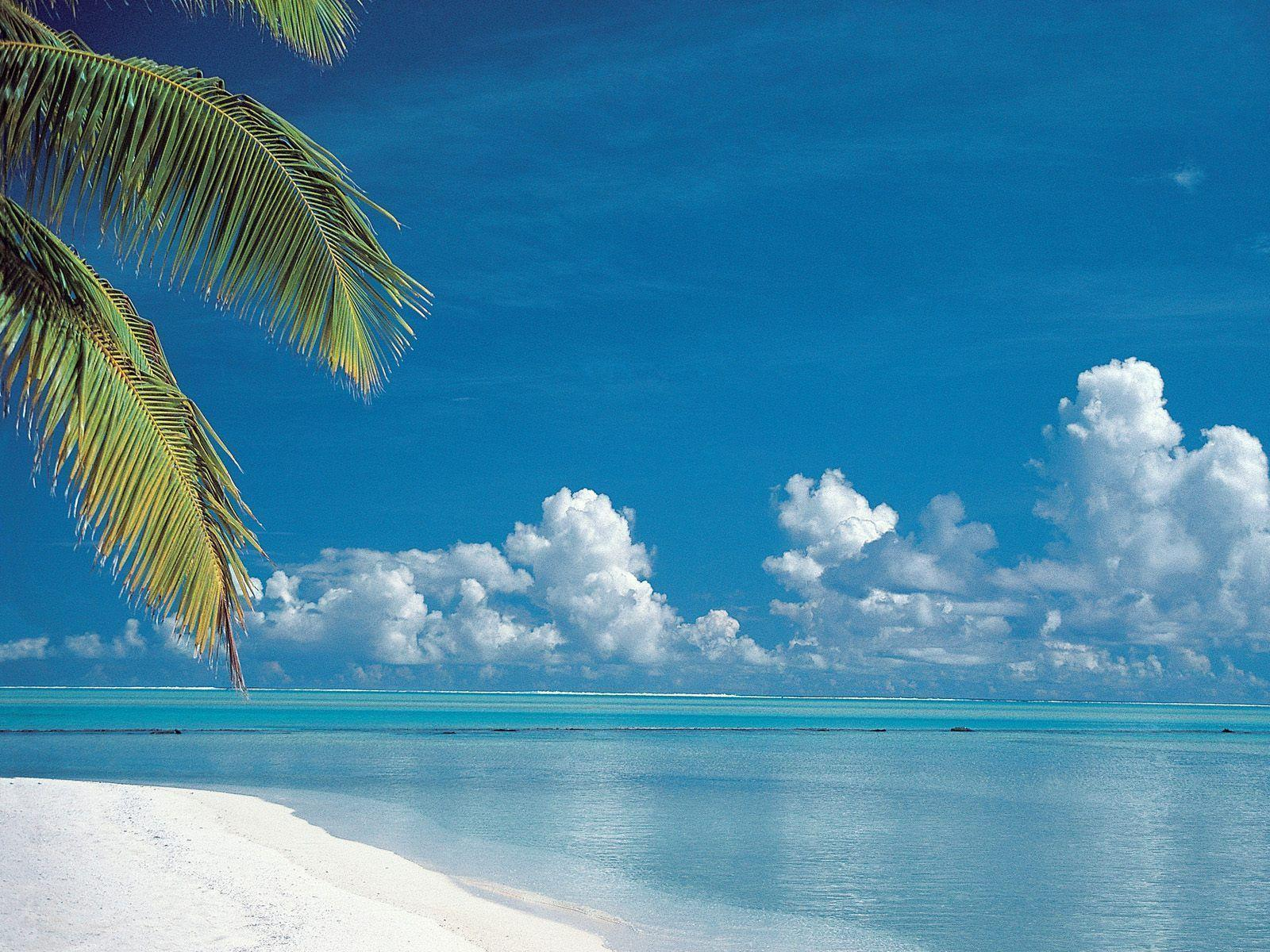 Tropical Beach Aitutaki Cook Islands Desktop Wallpaper