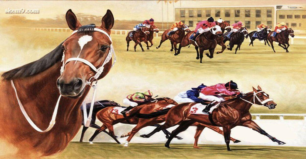 Horse Racing Strong Animals Wallpaper and Picture | Imagesize: 189 ...