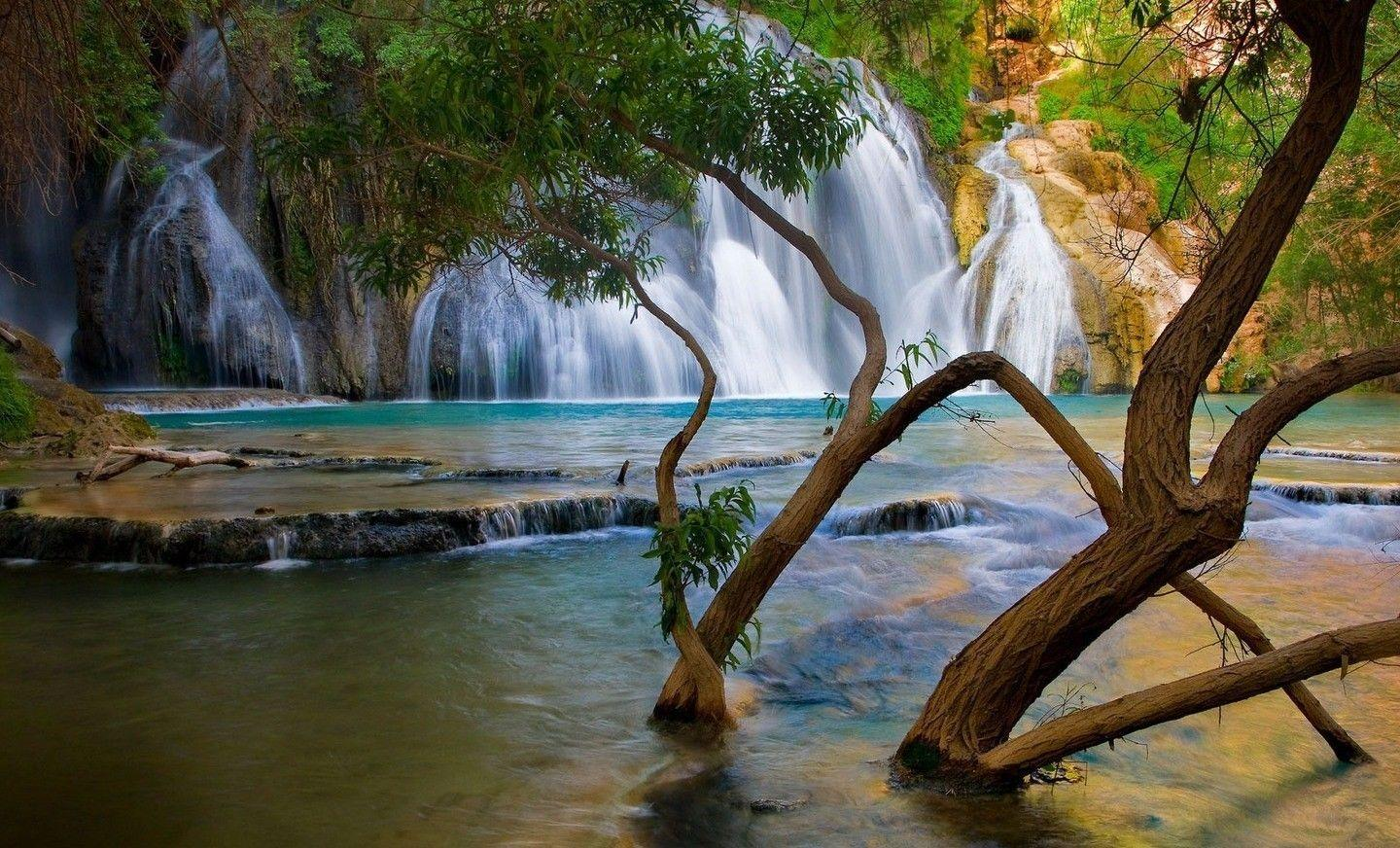 free beautiful nature wallpapers -#main