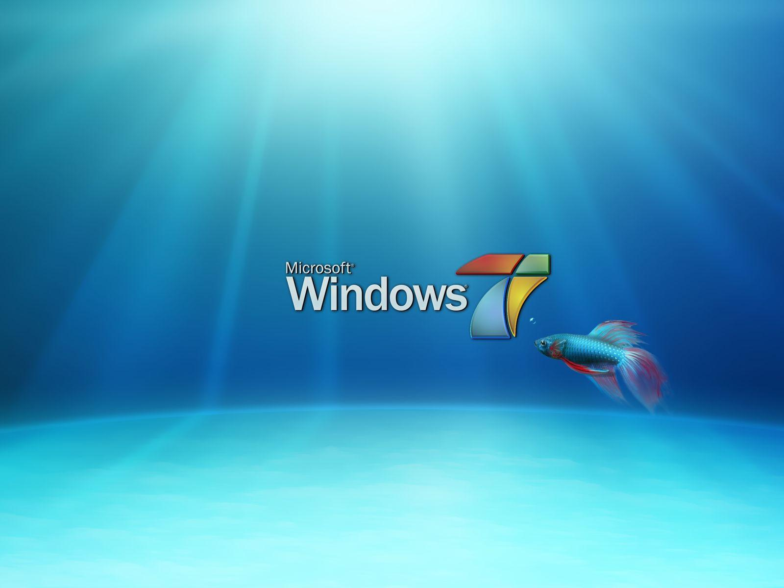 Wallpapers For > Moving Fish Wallpapers For Windows 7