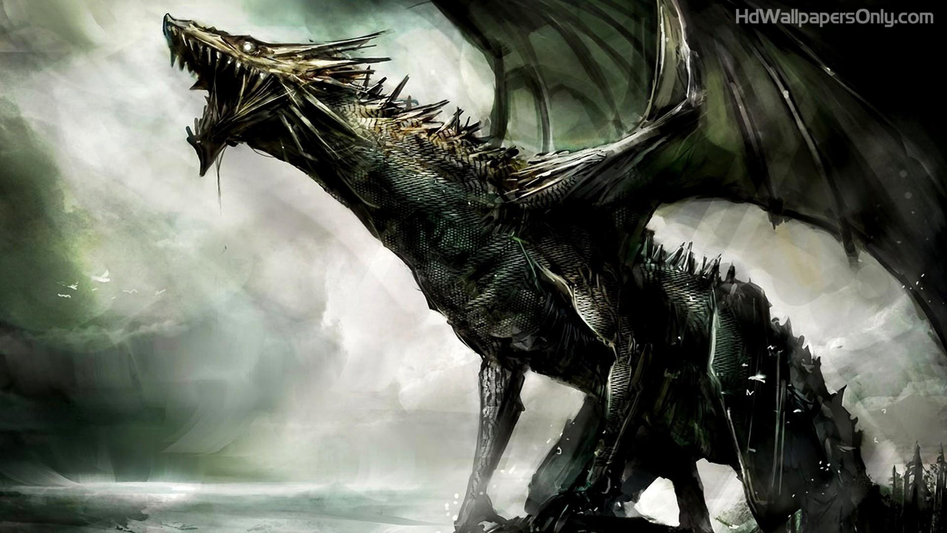dragon hd wallpapers - wallpaper cave