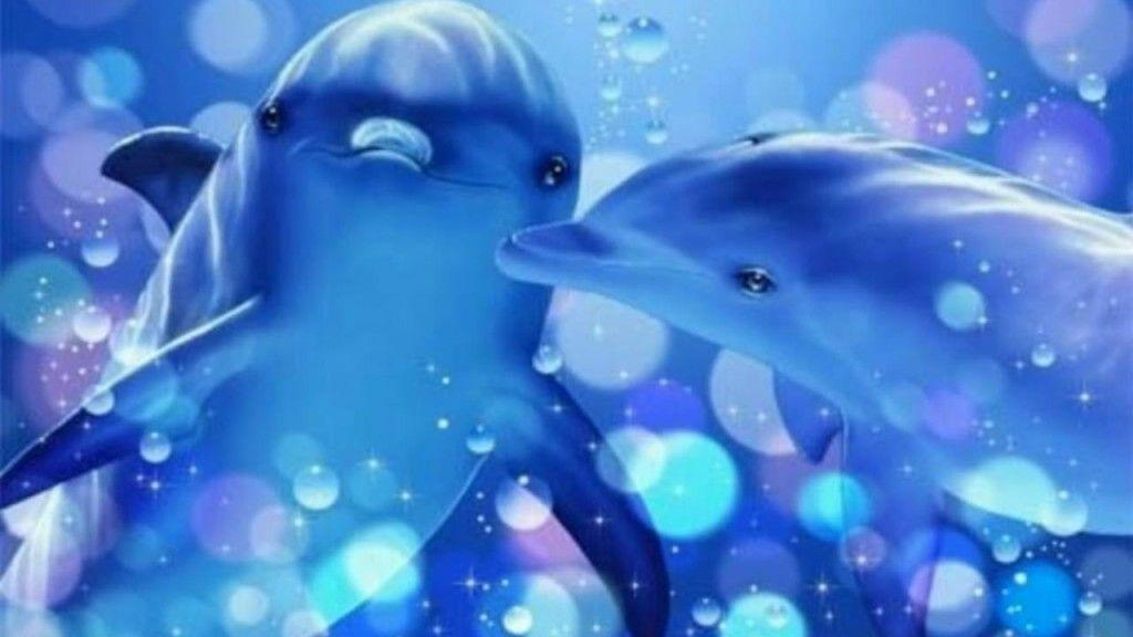 Dolphin Wallpaper Cute
