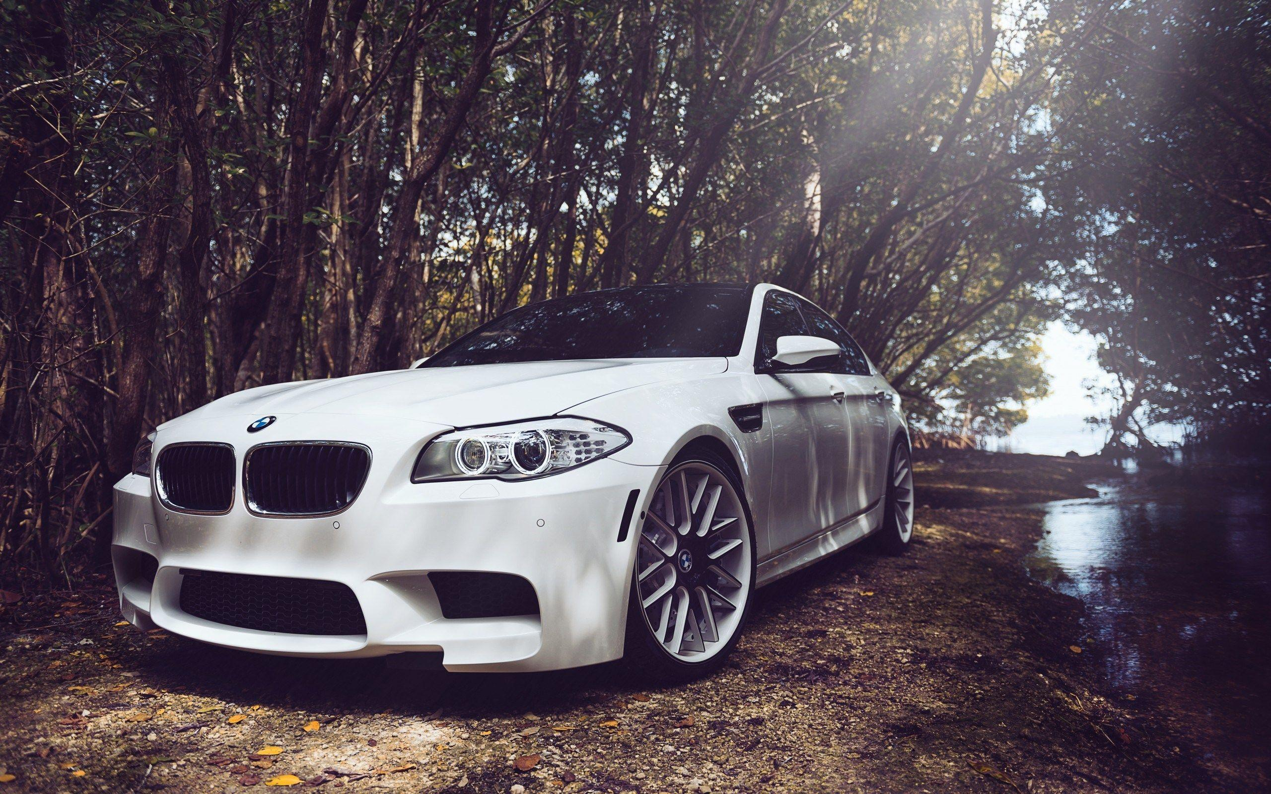 BMW M5 F10 White Car HD Wallpapers