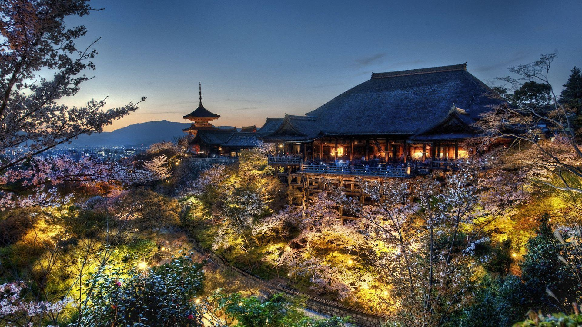 Home of the Tree Samurai, Japan widescreen wallpapers