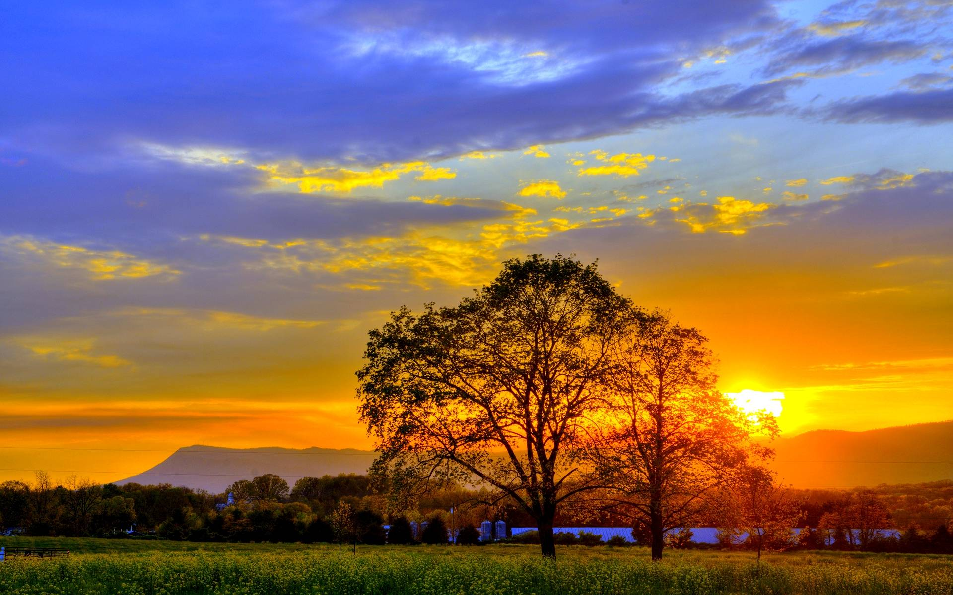 summer sunset landscape wallpaper - photo #6