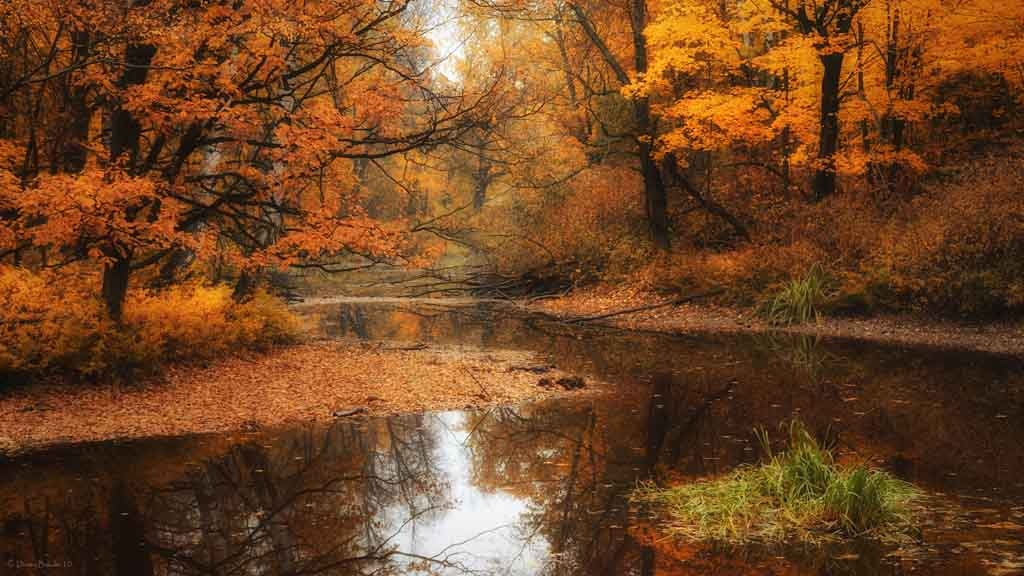 Autumn Wallpaper Desktop Collections | Cool Wallpaper