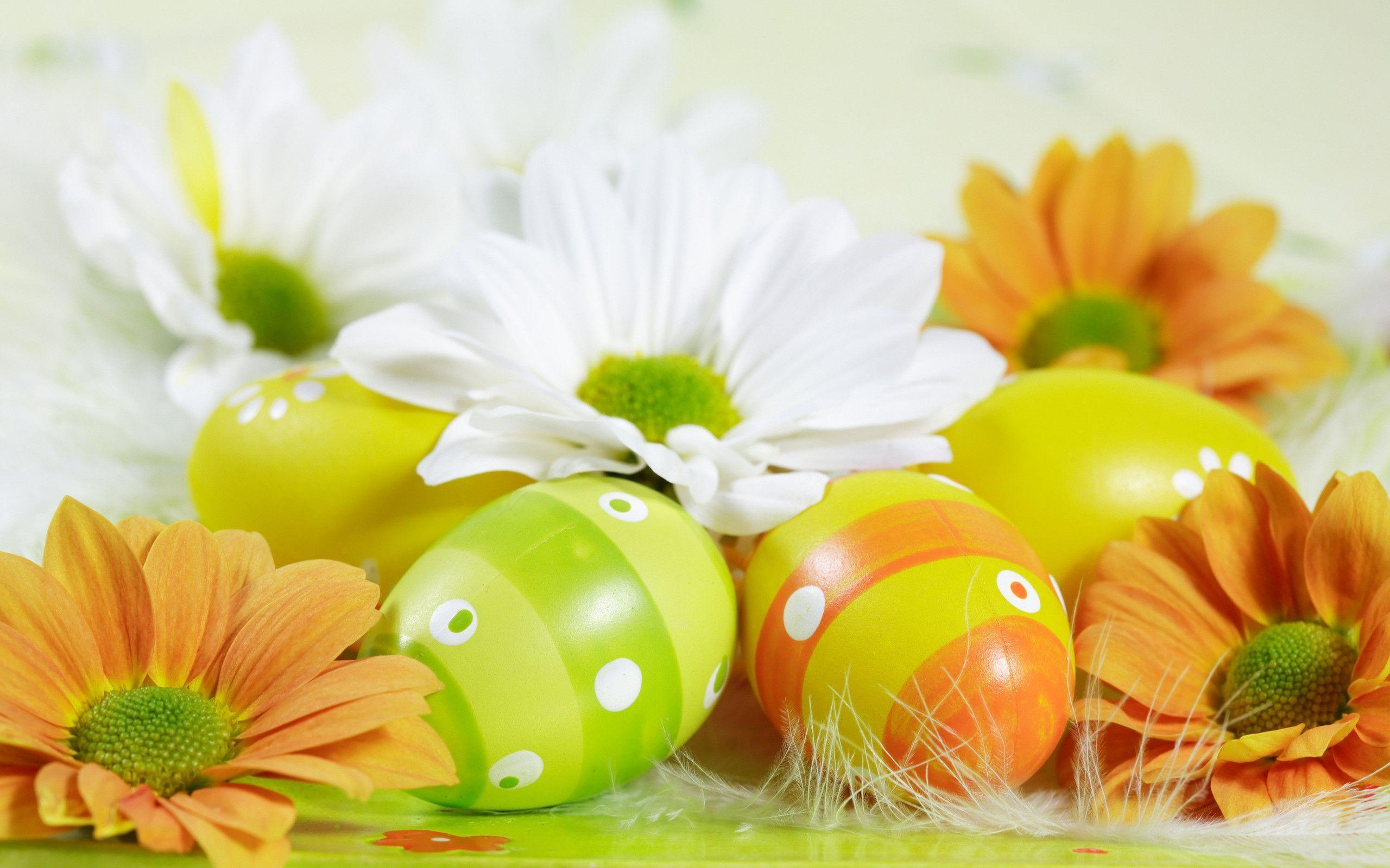 Easter Computer Wallpapers, Desktop Backgrounds 2560x1600 Id: 117651