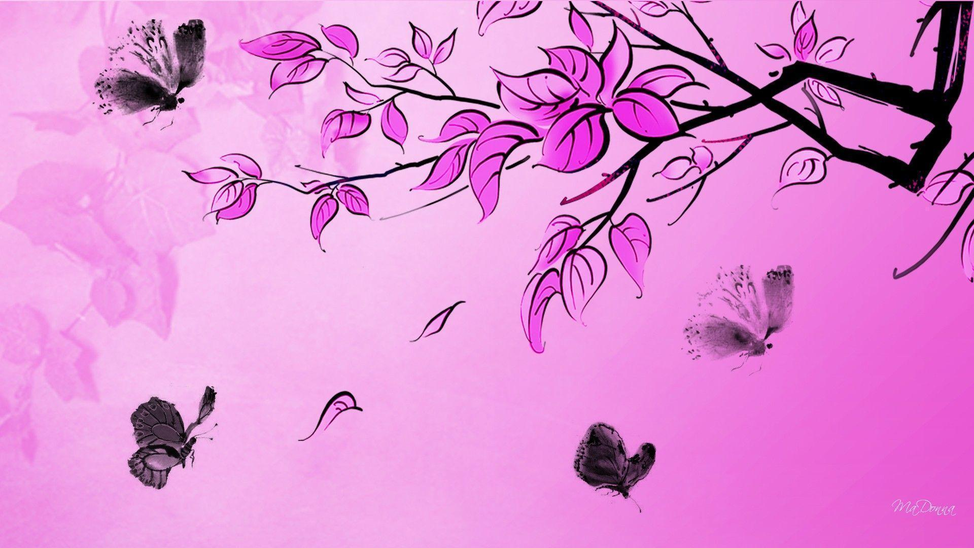 Wallpapers For Hot Pink And Black Butterfly Wallpaper