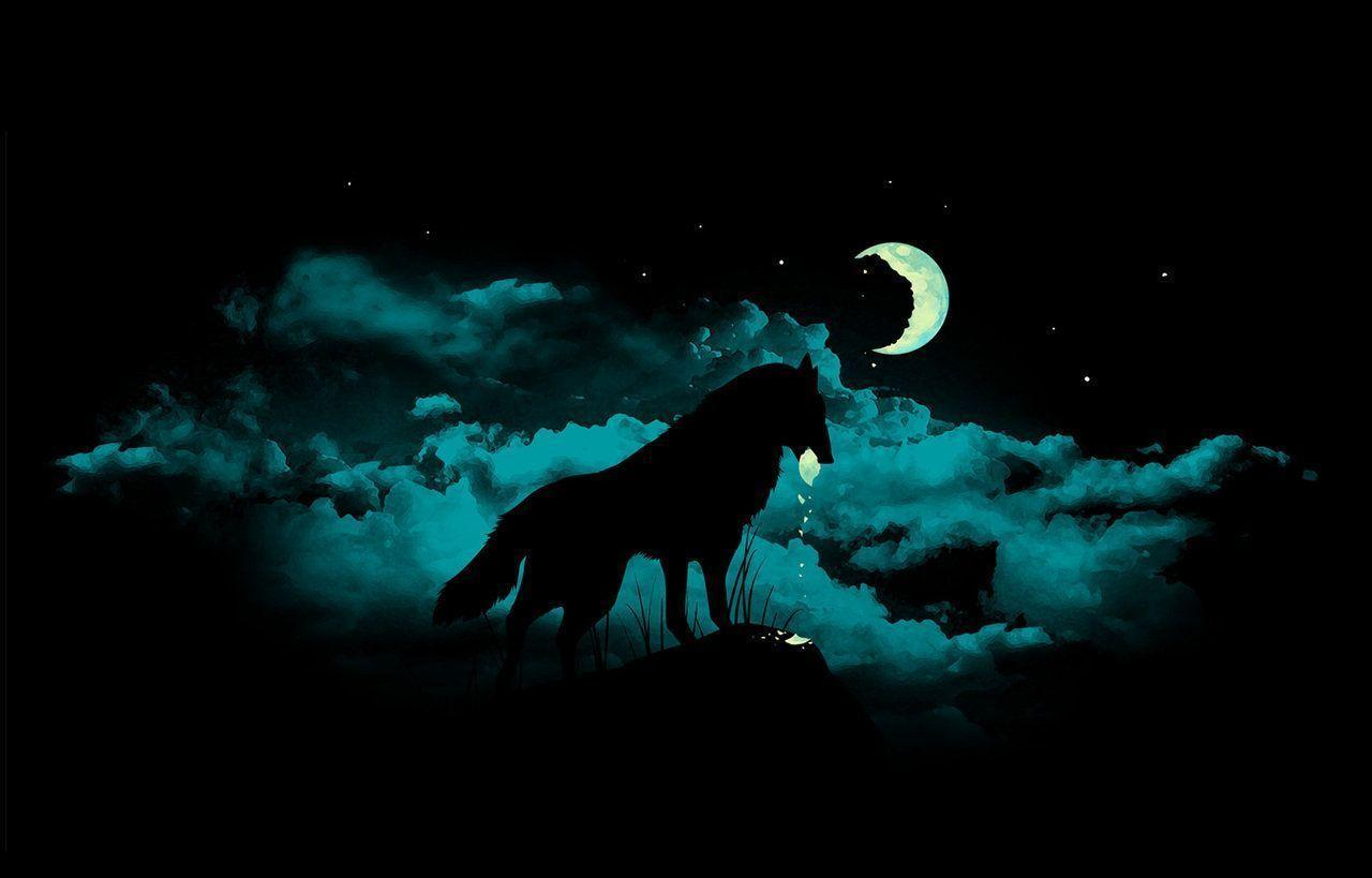 wallpapers wolves wallpaper cave