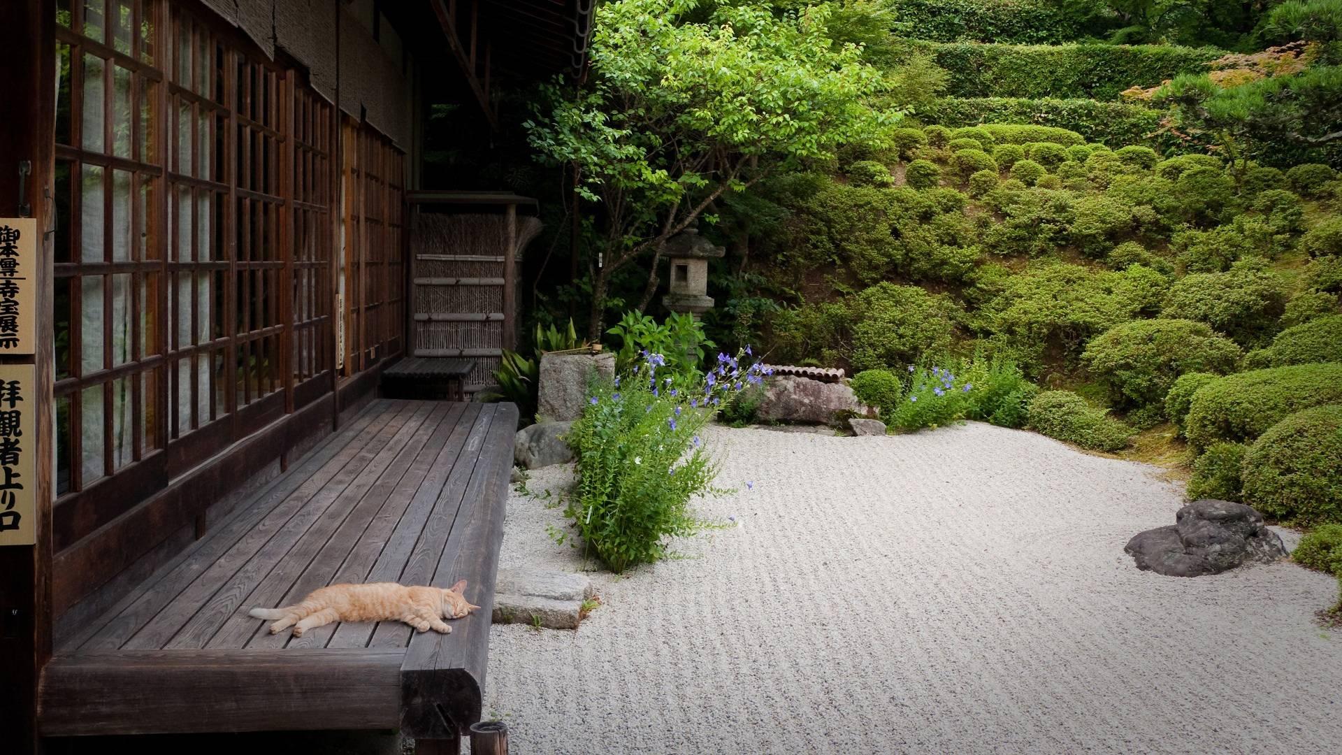 Japanese Garden Wallpapers Wallpaper Cave