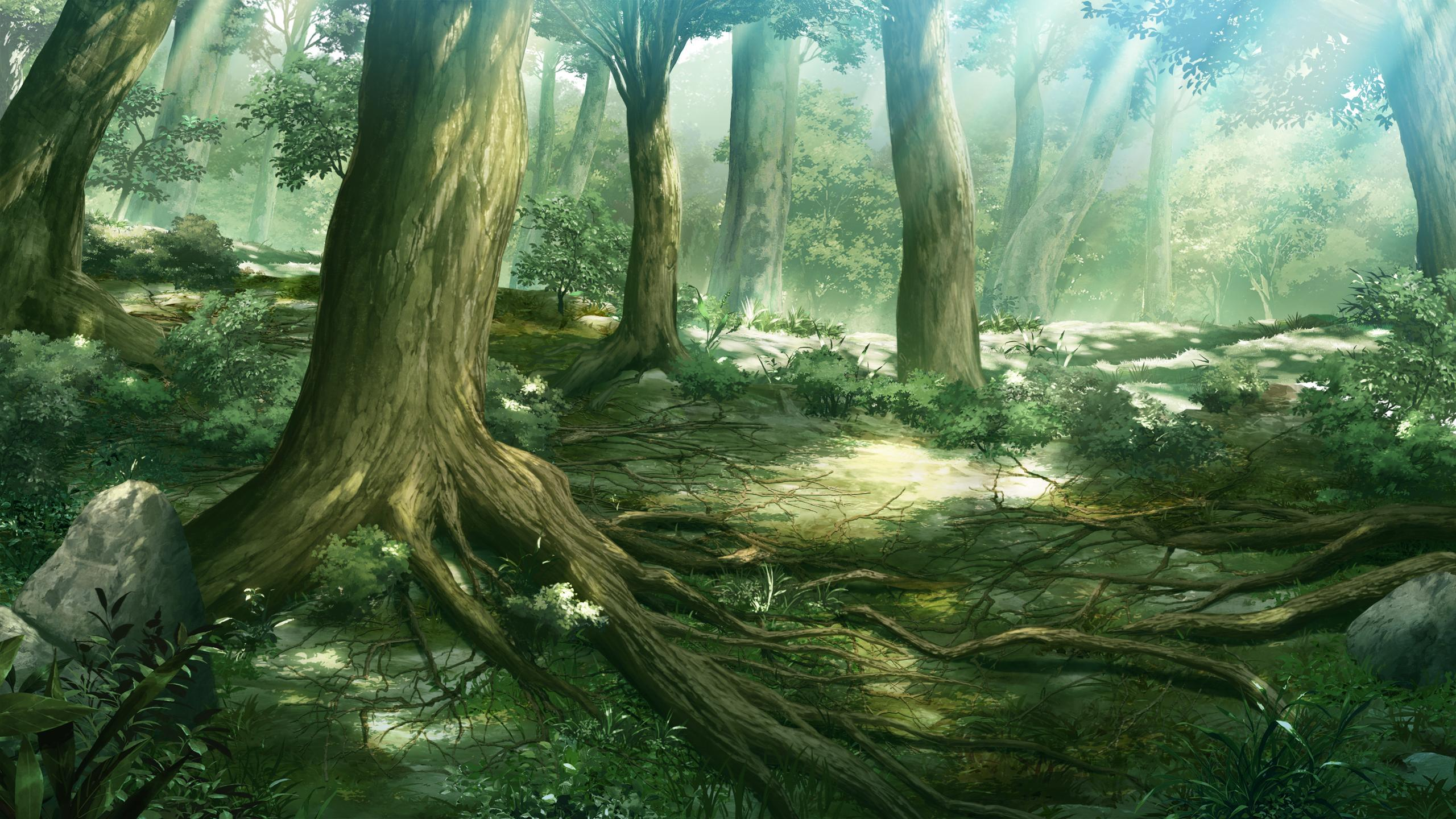 Images For > Anime Forest Scenery