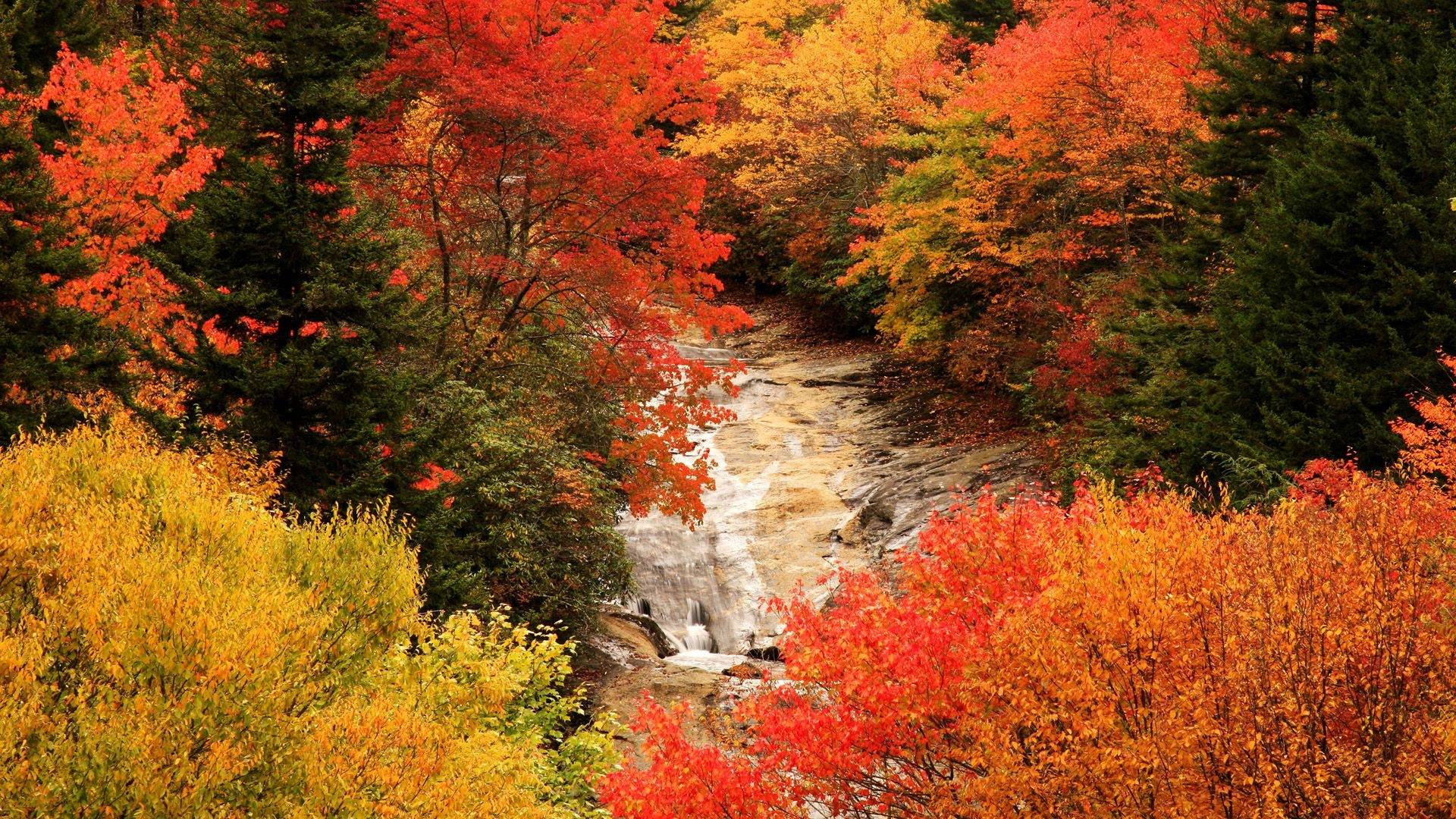 High Resolution Fall Wallpaper: Beautiful Fall Wallpapers
