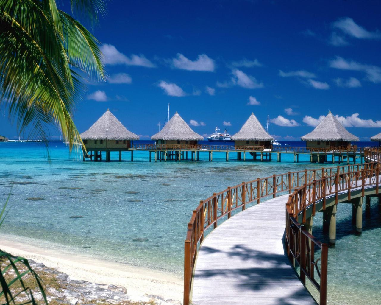 tropical island backgrounds - photo #38