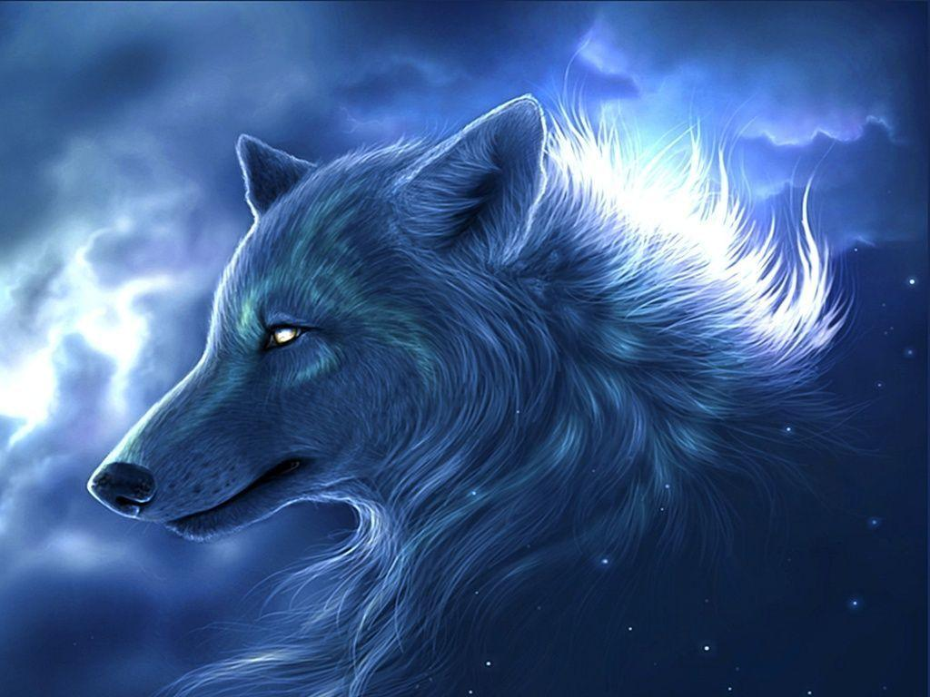 Animals For > Really Cool Wolf Wallpapers