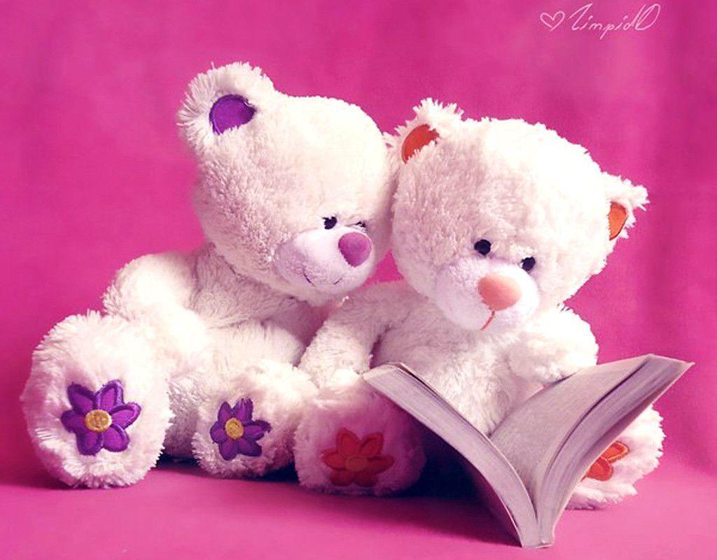 25 Romantic Teddy Bear Wallpapers