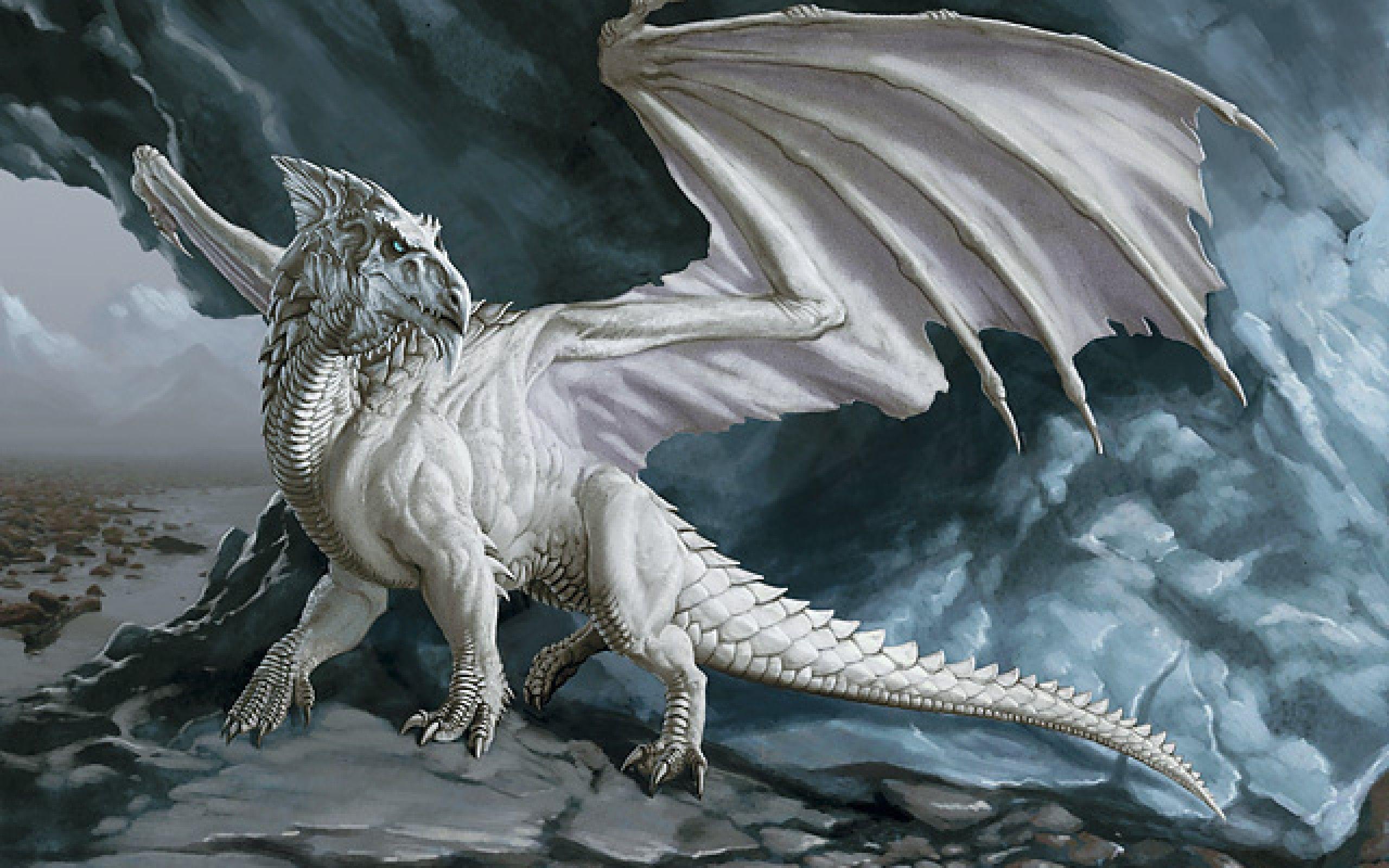 White Dragon Wallpapers