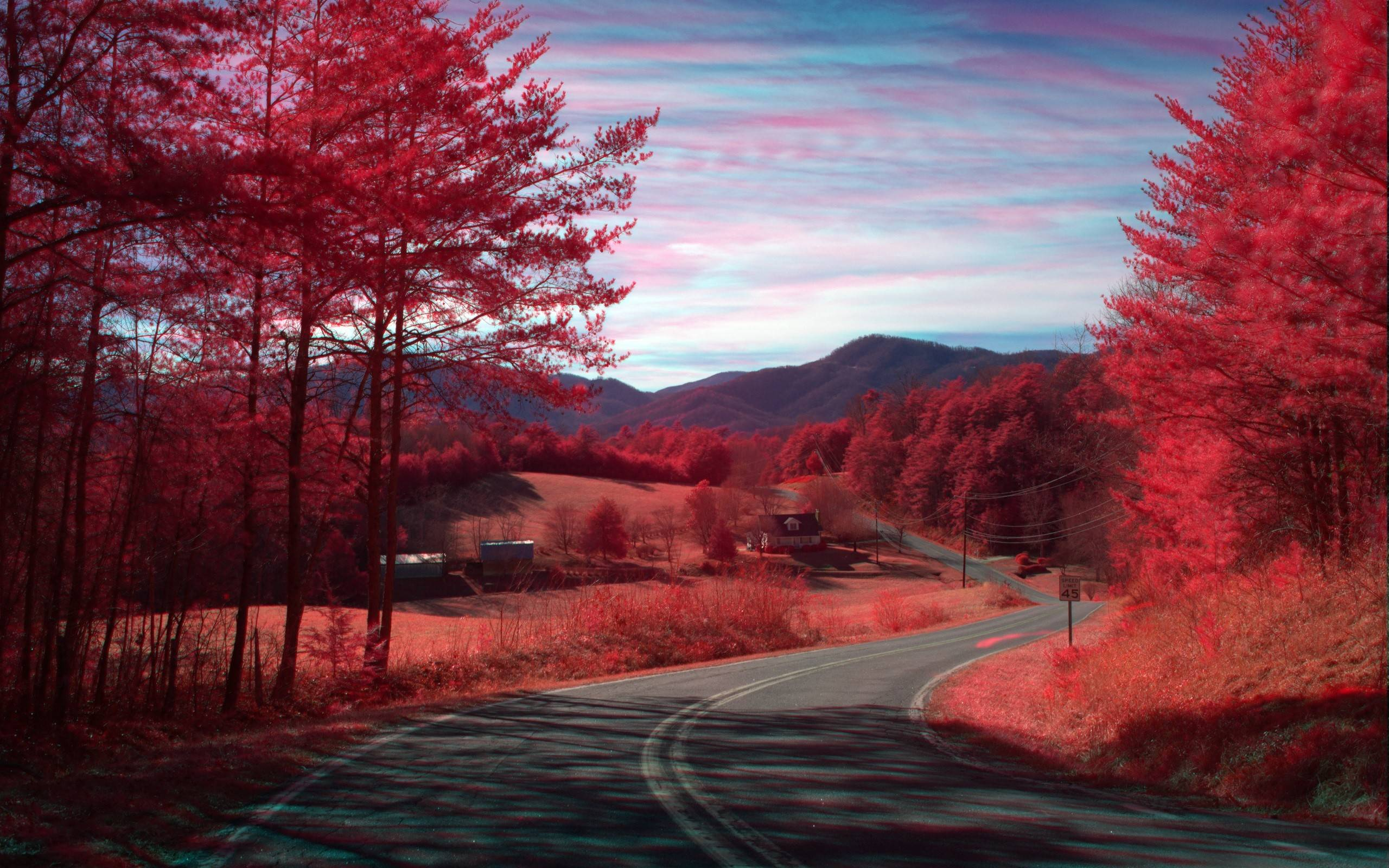 Image result for red nature