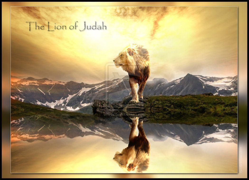 The Lion of Judah by JennBowers