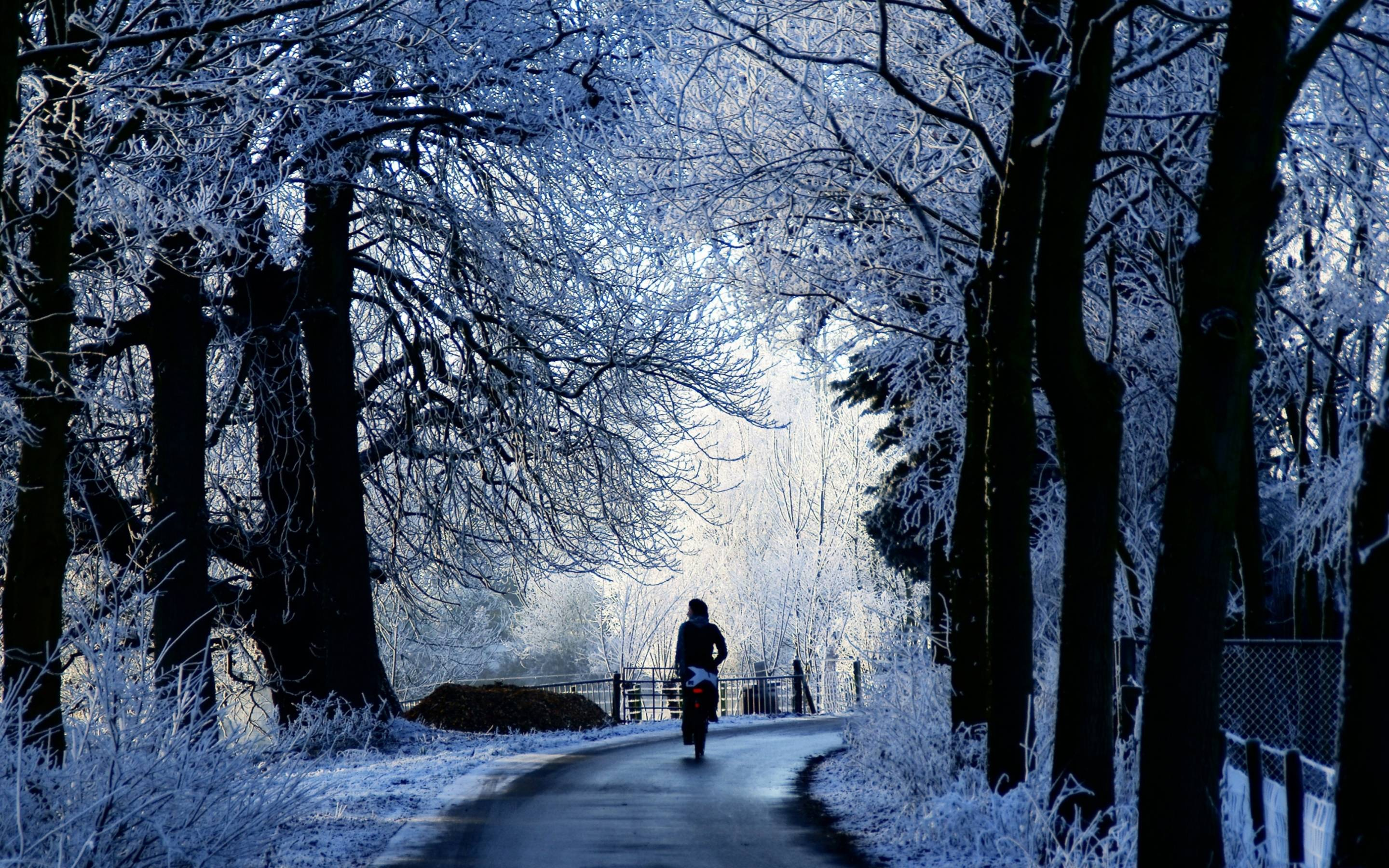 Winter Wallpapers For Mac