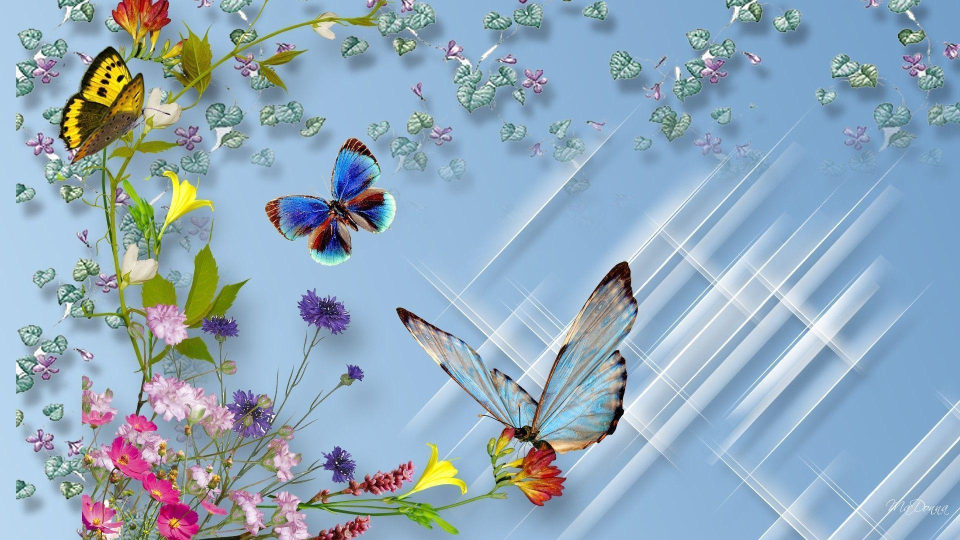 butterfly and flower wallpapers wallpaper cave
