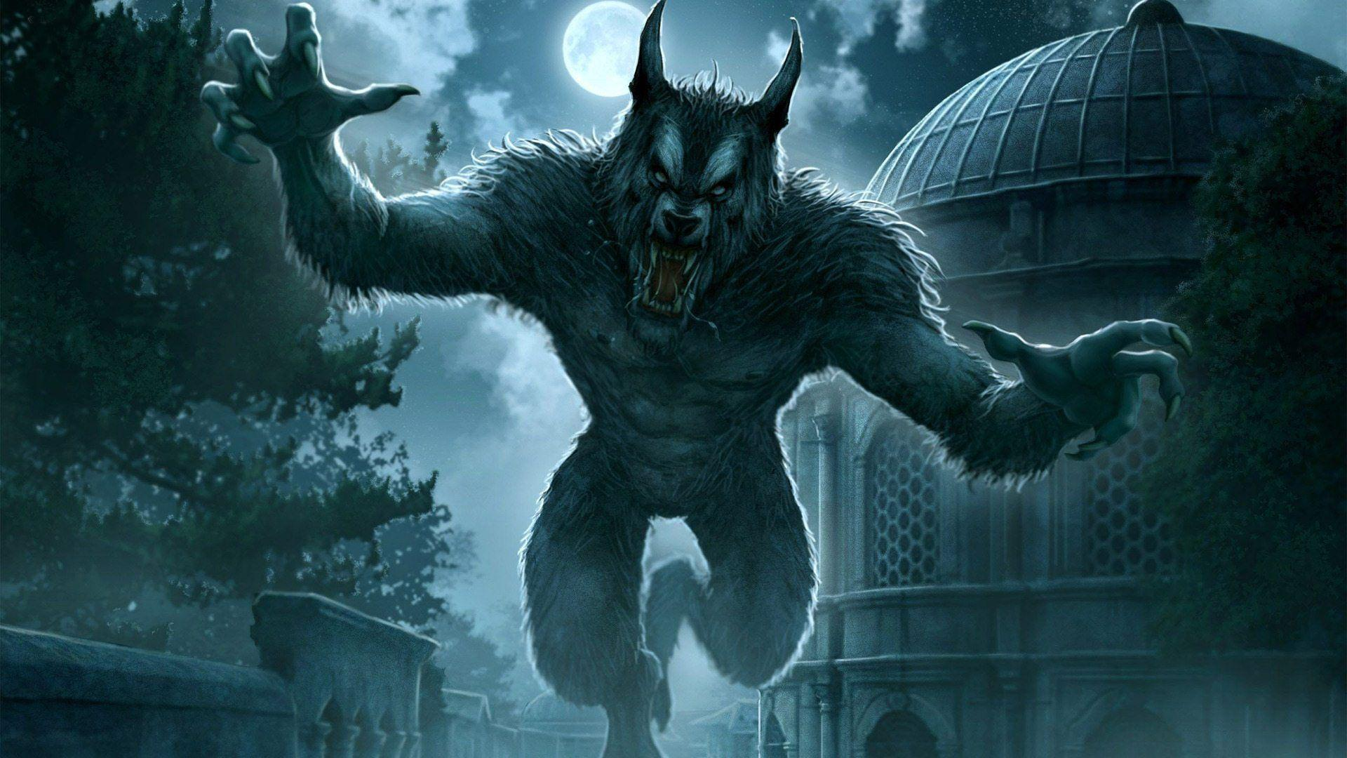 Werewolf Photos Free Wallpapers For Phone HD
