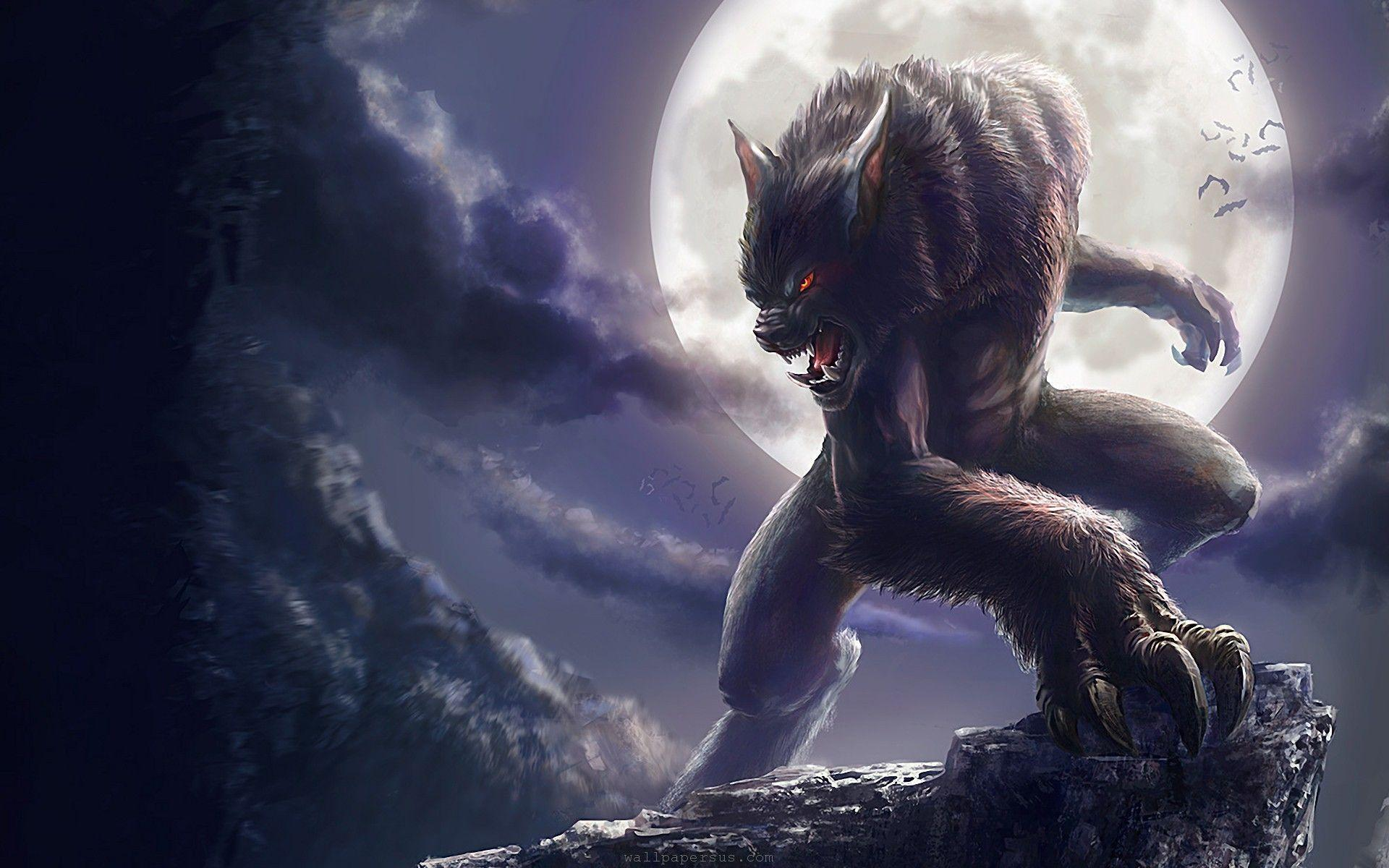 underworld werewolf wallpapers wallpaper cave