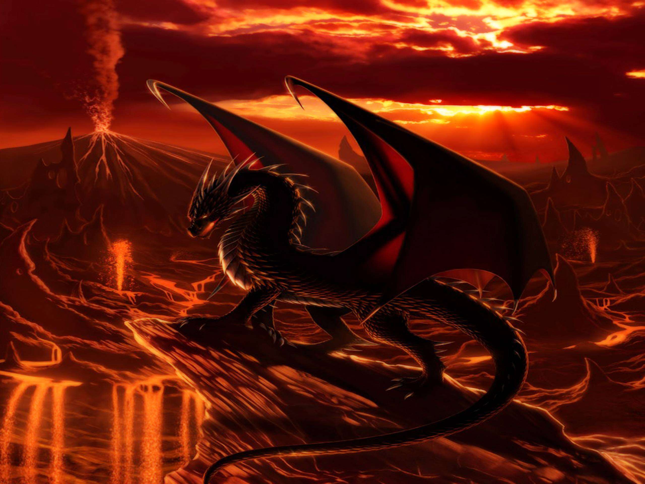 Images For Cool Fire Dragon Wallpapers