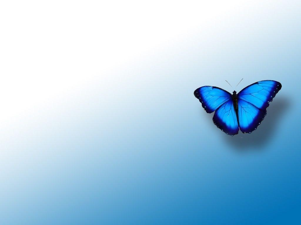 butterfly blue abstract wallpaper - photo #27