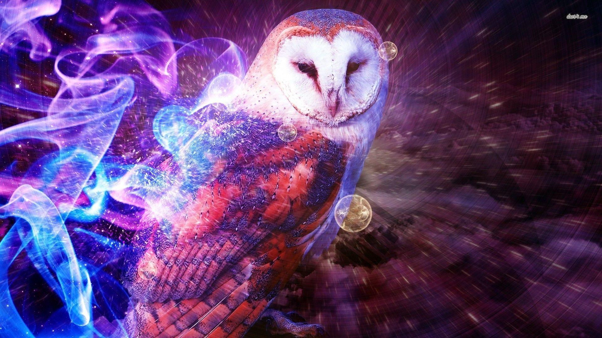 owl wallpaper desktop 7 - photo #32