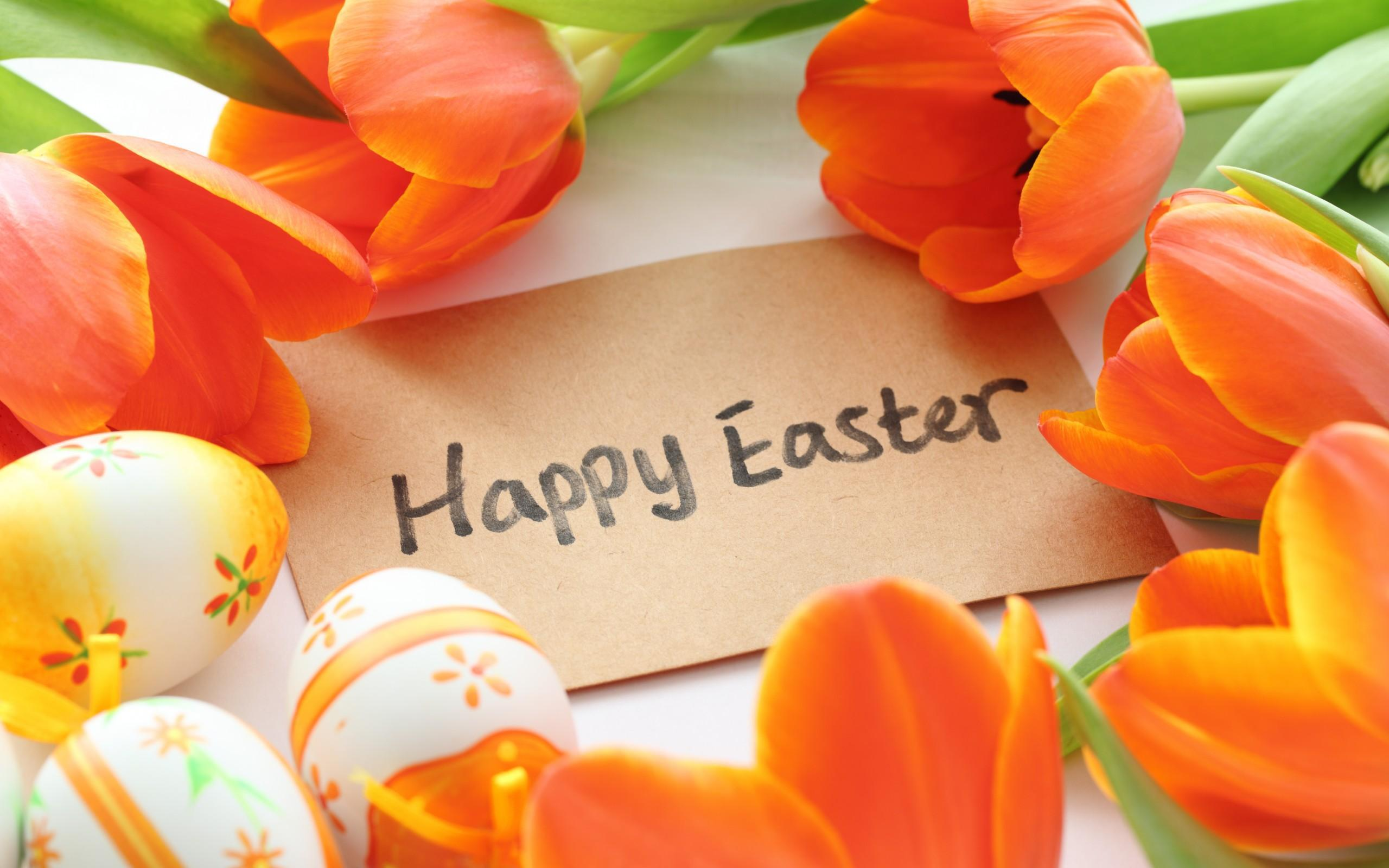 Happy Holliday, Happy Easter and Happy New Years Wallpapers HD