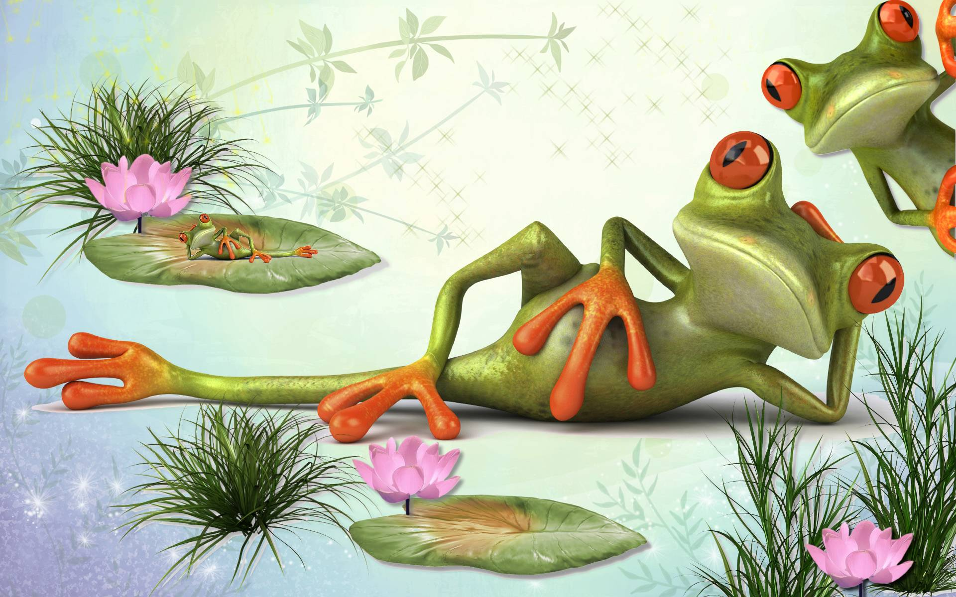 HD Frog&Cool Life Wallpapers