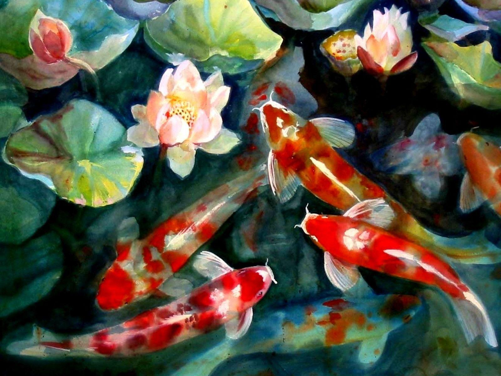 Koi fish backgrounds wallpaper cave for Koi fish games