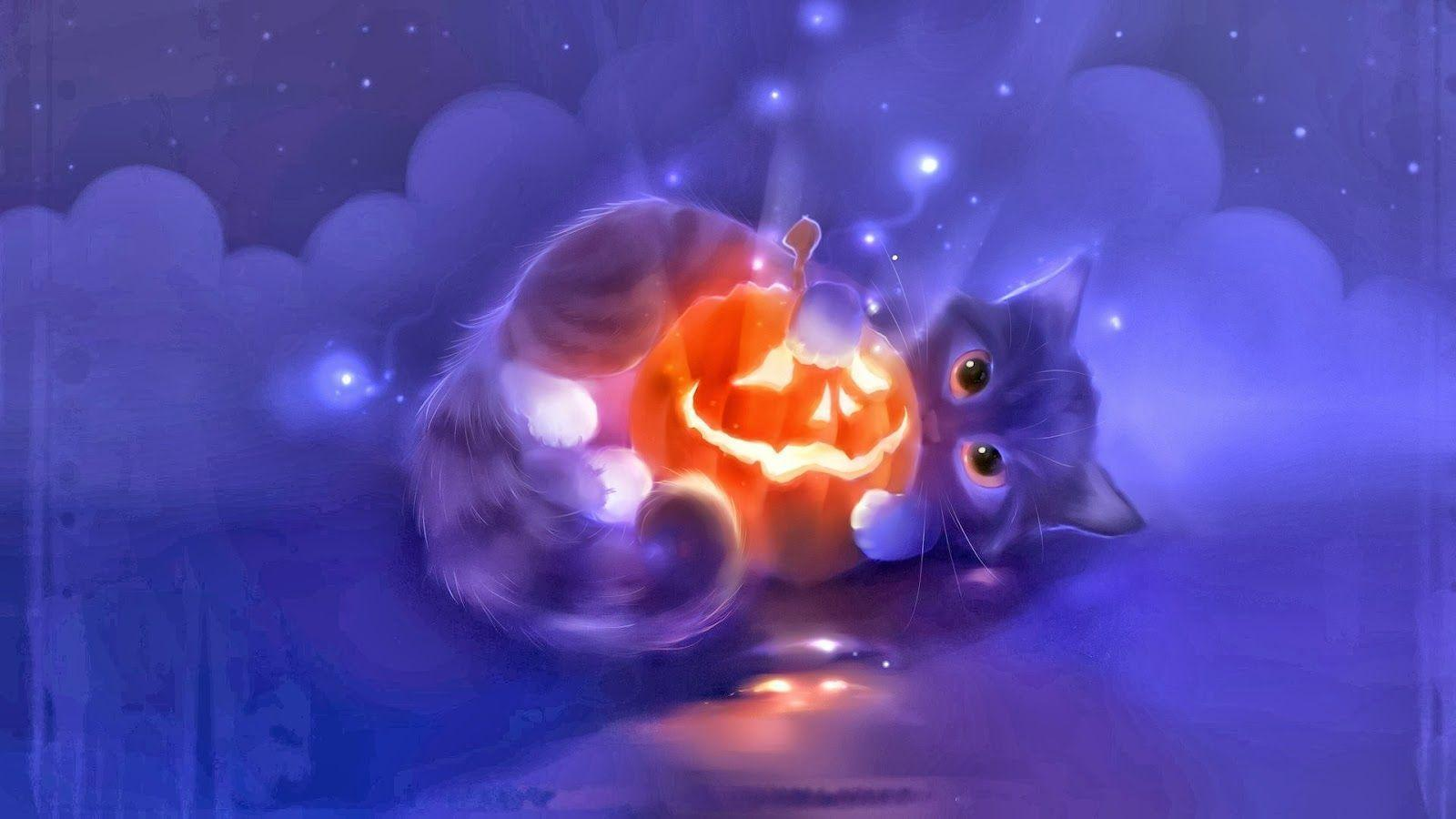 Cute Cat Lantern Pumpkin Halloween x5 HD Wallpaper